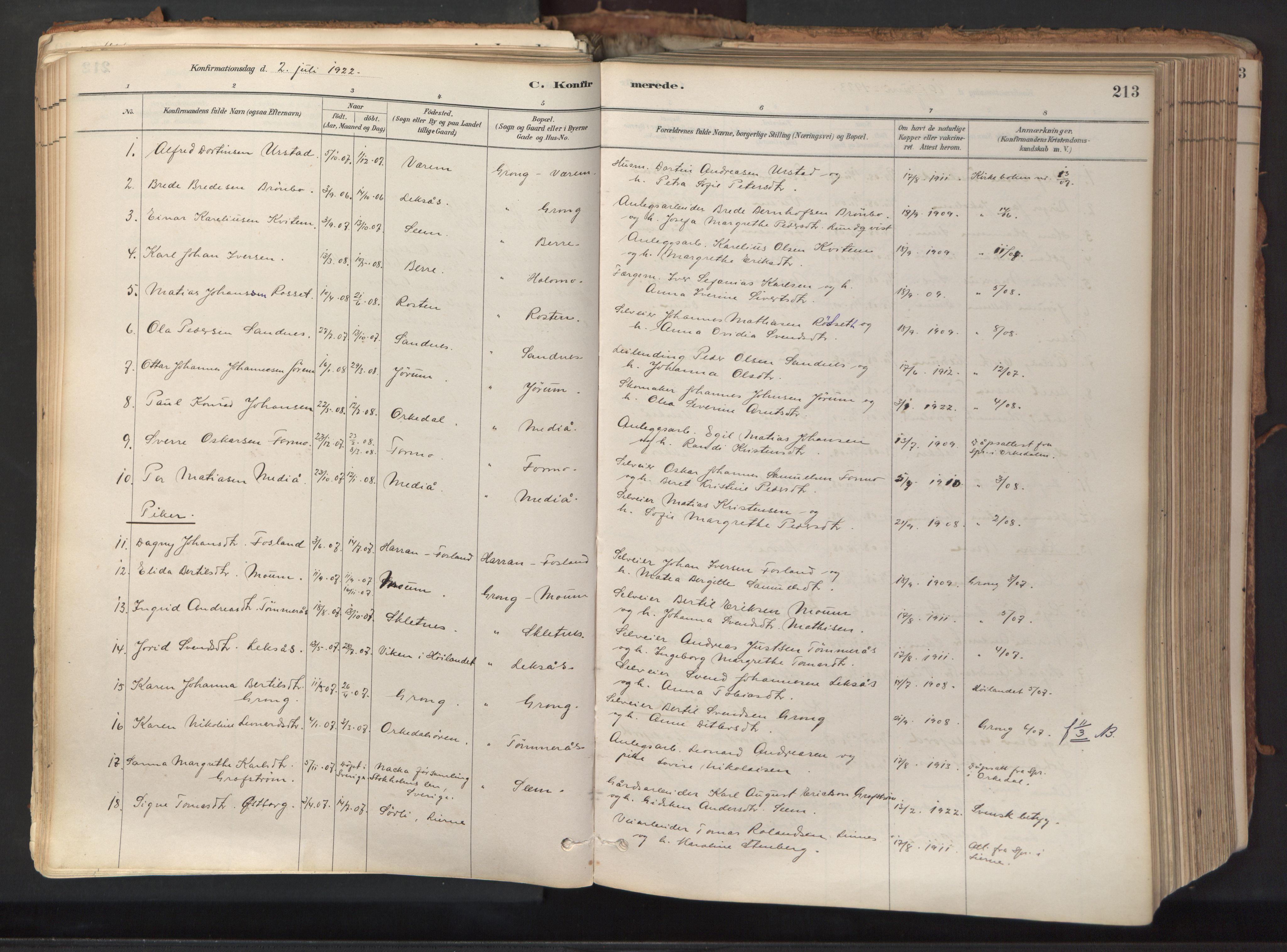 SAT, Ministerialprotokoller, klokkerbøker og fødselsregistre - Nord-Trøndelag, 758/L0519: Ministerialbok nr. 758A04, 1880-1926, s. 213