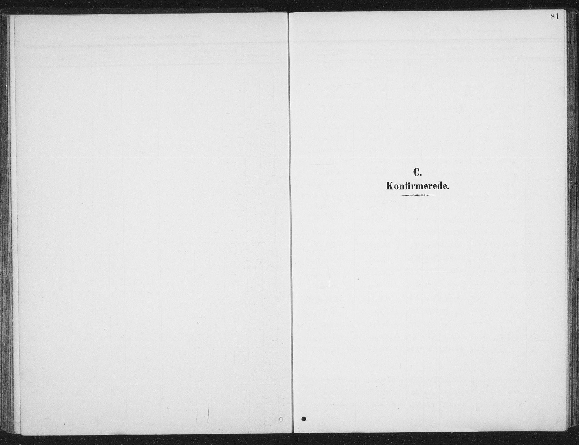 SAT, Ministerialprotokoller, klokkerbøker og fødselsregistre - Sør-Trøndelag, 657/L0709: Ministerialbok nr. 657A10, 1905-1919, s. 81