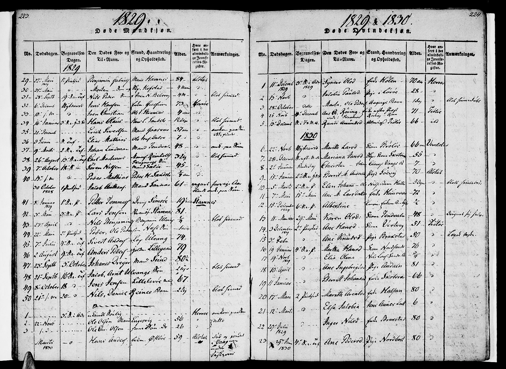 SAT, Ministerialprotokoller, klokkerbøker og fødselsregistre - Nordland, 830/L0445: Ministerialbok nr. 830A09, 1820-1830, s. 223-224