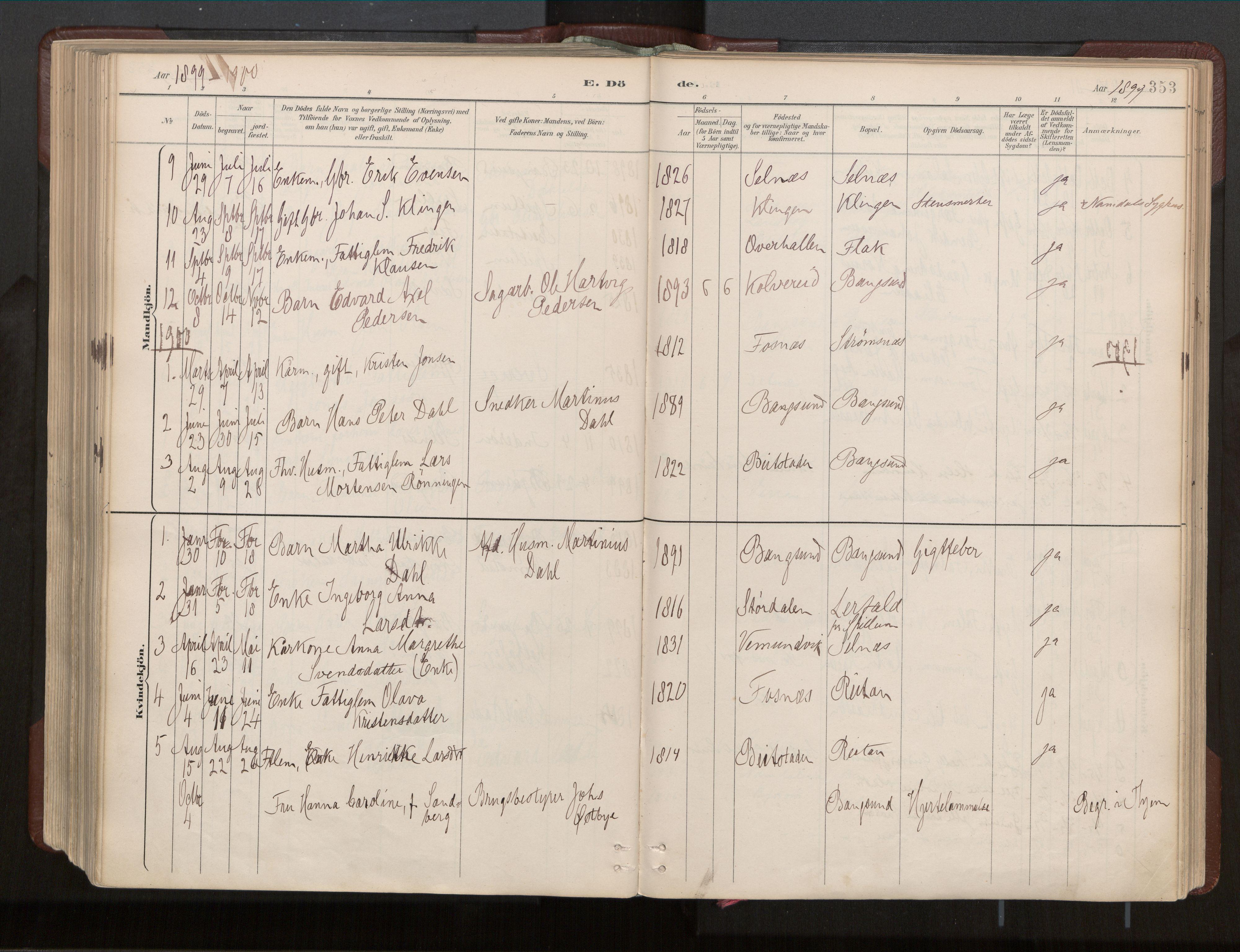 SAT, Ministerialprotokoller, klokkerbøker og fødselsregistre - Nord-Trøndelag, 770/L0589: Ministerialbok nr. 770A03, 1887-1929, s. 353