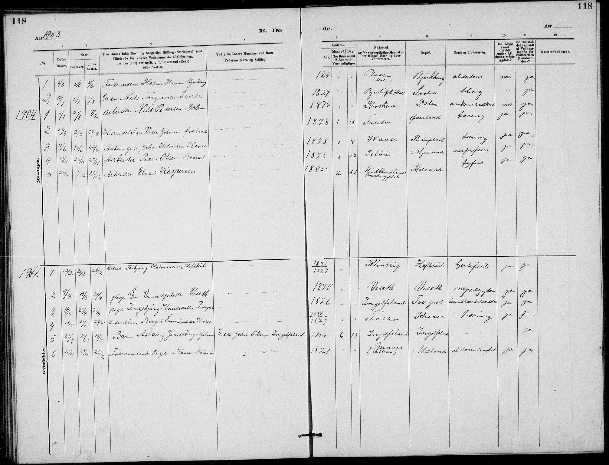 SAKO, Rjukan kirkebøker, G/Ga/L0001: Klokkerbok nr. 1, 1880-1914, s. 118
