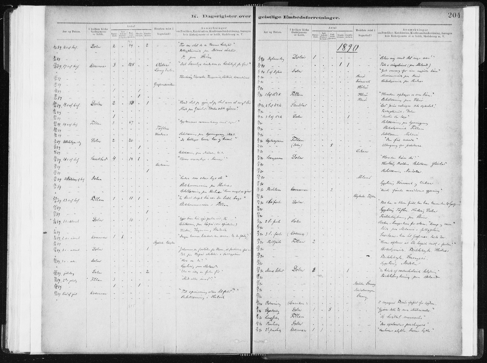 SAT, Ministerialprotokoller, klokkerbøker og fødselsregistre - Sør-Trøndelag, 634/L0533: Ministerialbok nr. 634A09, 1882-1901, s. 204