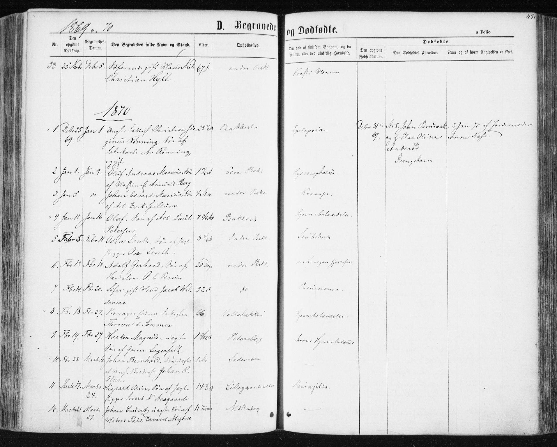 SAT, Ministerialprotokoller, klokkerbøker og fødselsregistre - Sør-Trøndelag, 604/L0186: Ministerialbok nr. 604A07, 1866-1877, s. 431