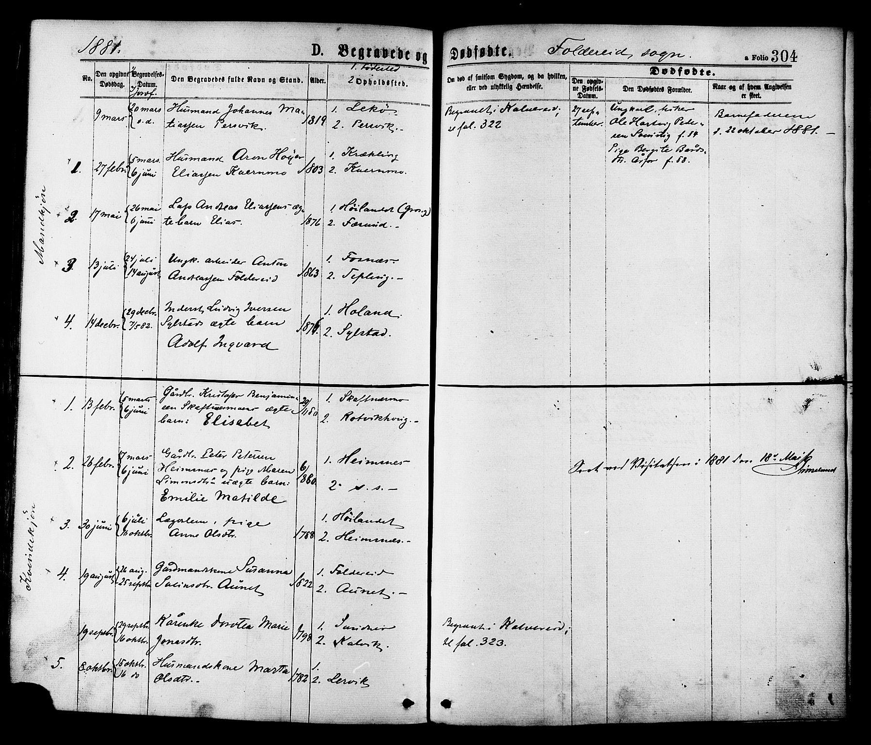 SAT, Ministerialprotokoller, klokkerbøker og fødselsregistre - Nord-Trøndelag, 780/L0642: Ministerialbok nr. 780A07 /2, 1878-1885, s. 304
