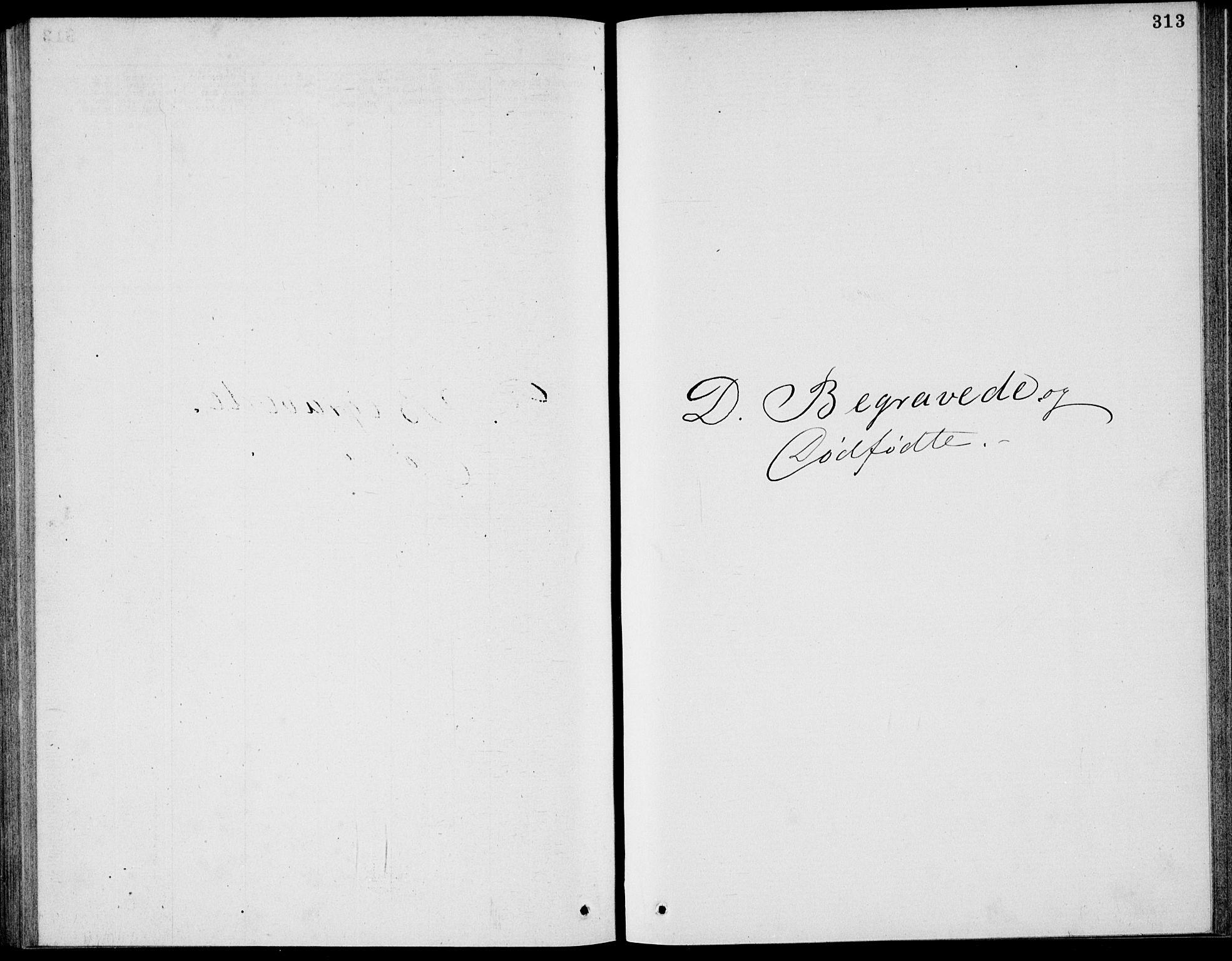 SAKO, Bamble kirkebøker, G/Ga/L0007: Klokkerbok nr. I 7, 1876-1877, s. 313