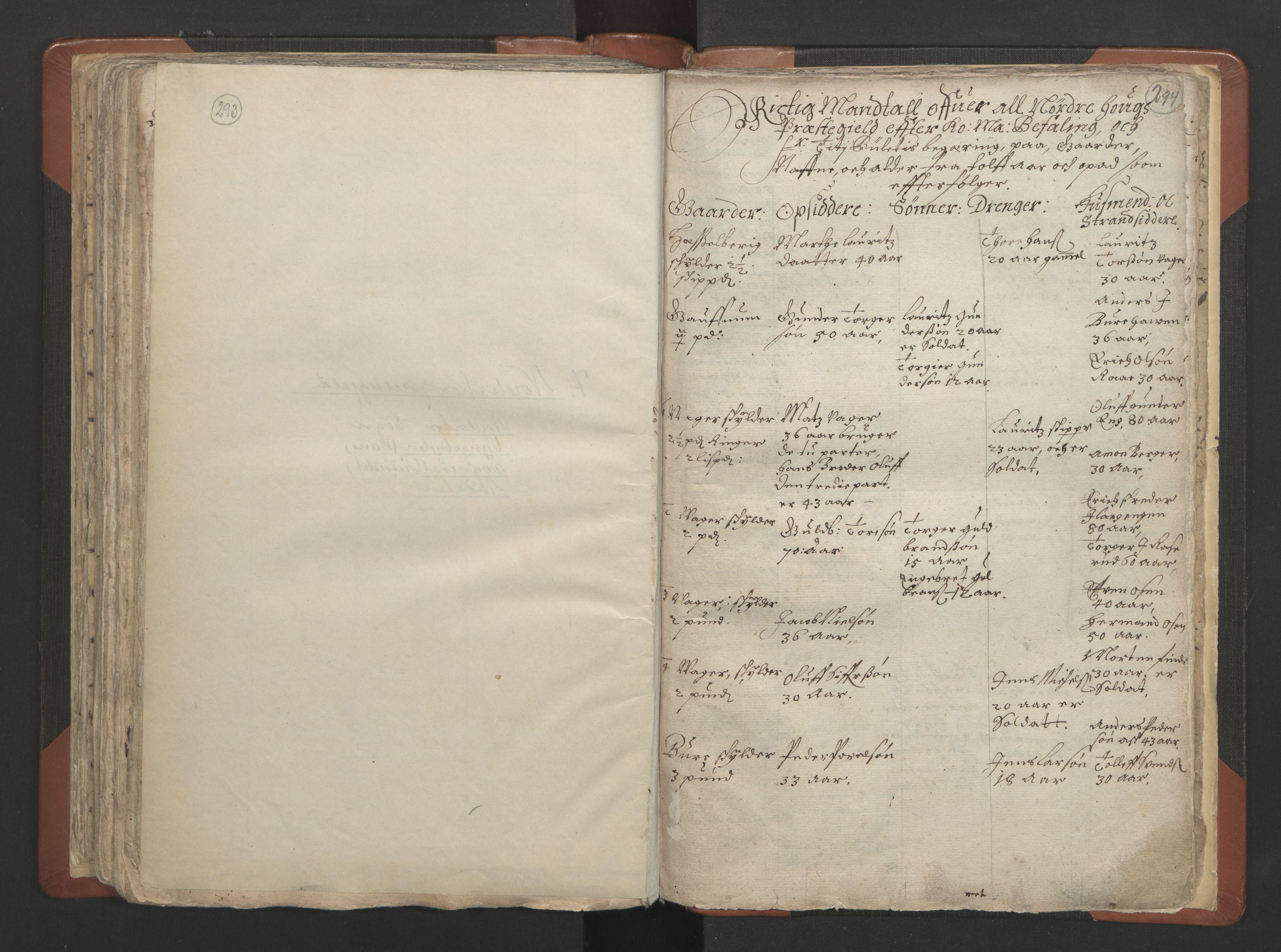 RA, Sogneprestenes manntall 1664-1666, nr. 7: Hadeland prosti, 1664-1666, s. 293-294