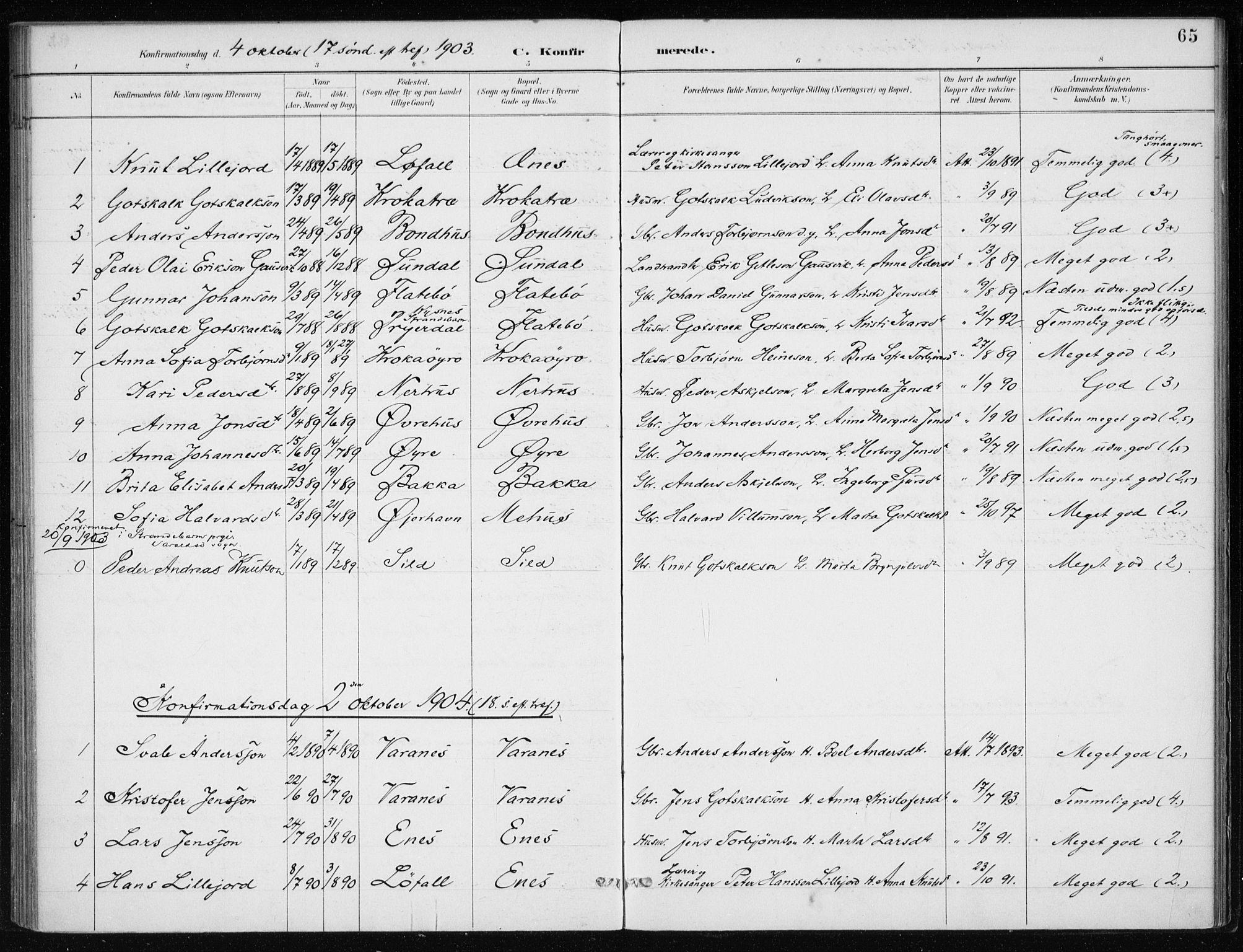 SAB, Kvinnherad Sokneprestembete, H/Haa: Ministerialbok nr. F 1, 1887-1912, s. 65
