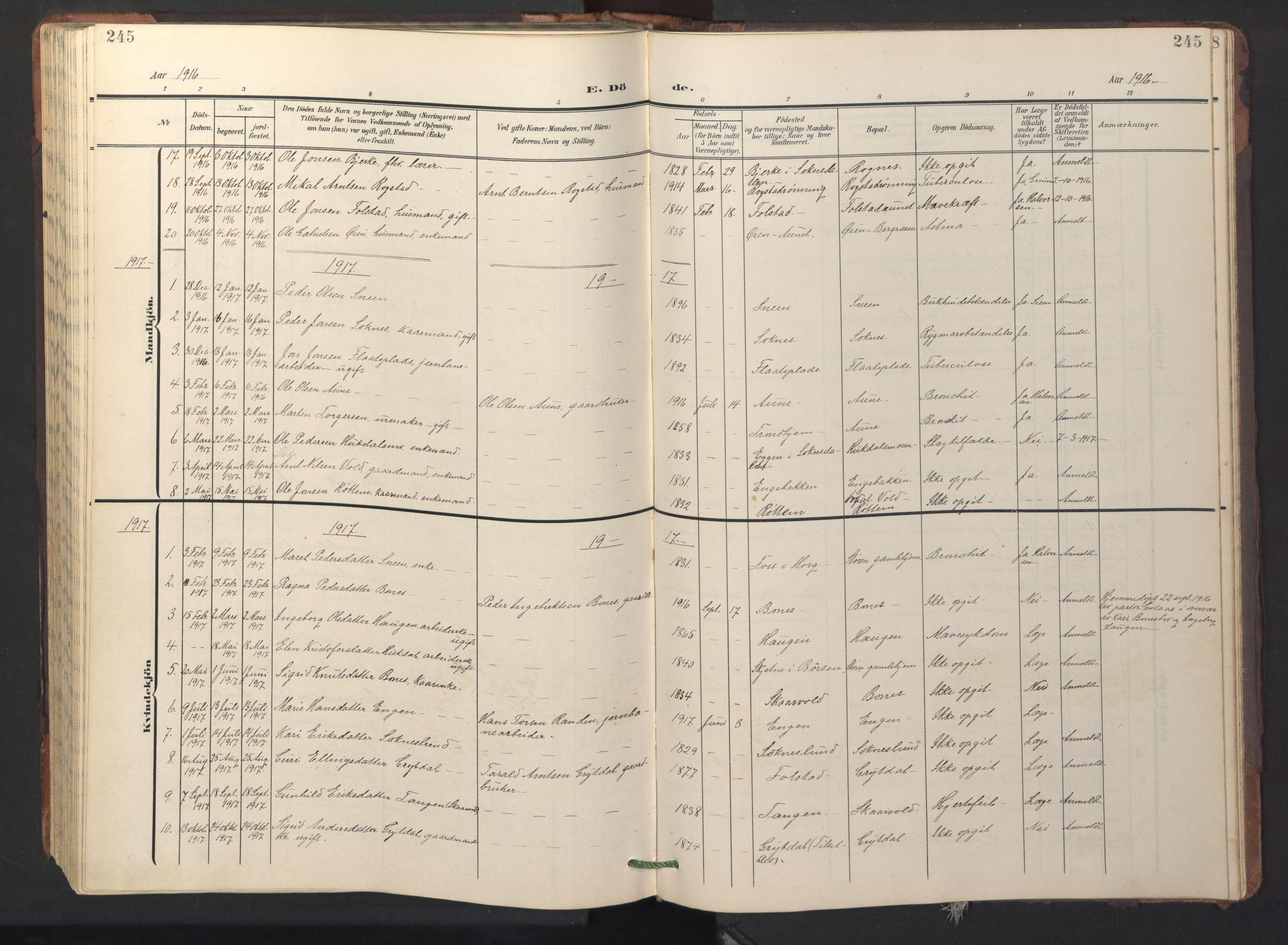 SAT, Ministerialprotokoller, klokkerbøker og fødselsregistre - Sør-Trøndelag, 687/L1019: Klokkerbok nr. 687C03, 1904-1931, s. 245