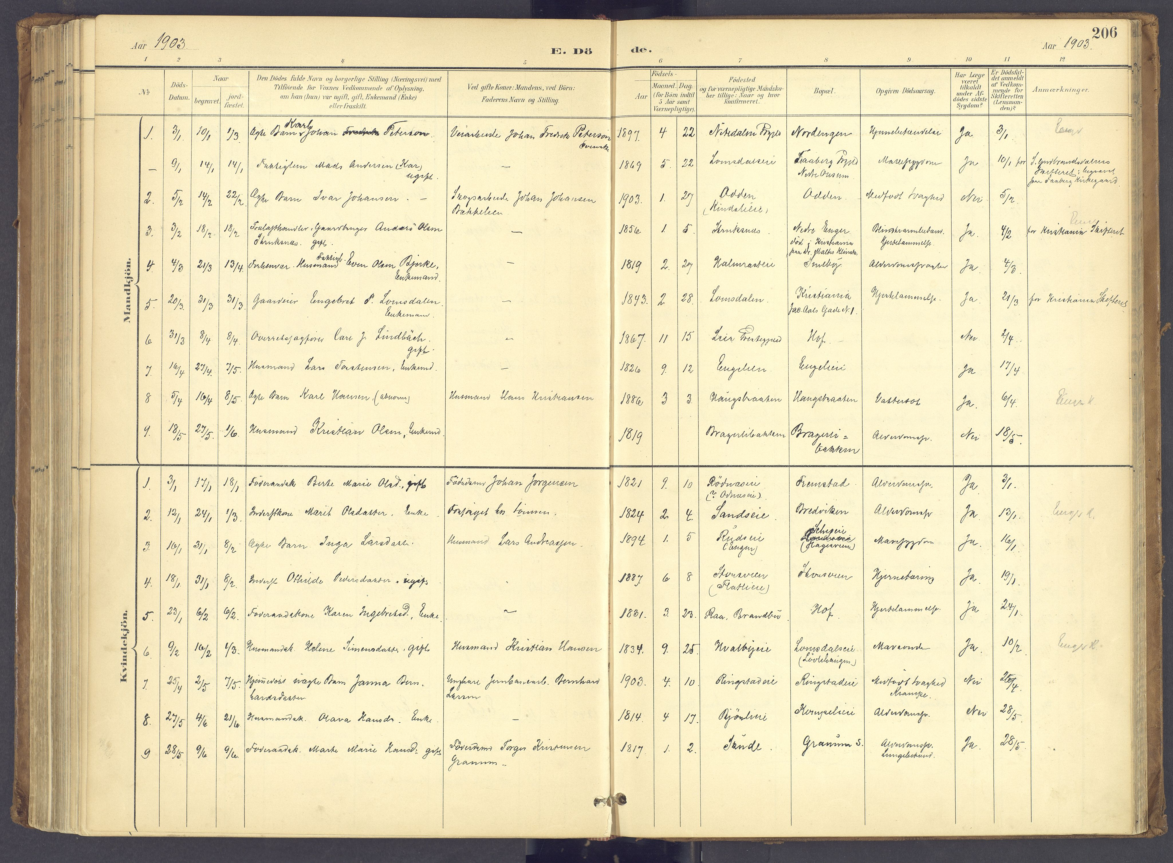 SAH, Søndre Land prestekontor, K/L0006: Ministerialbok nr. 6, 1895-1904, s. 206