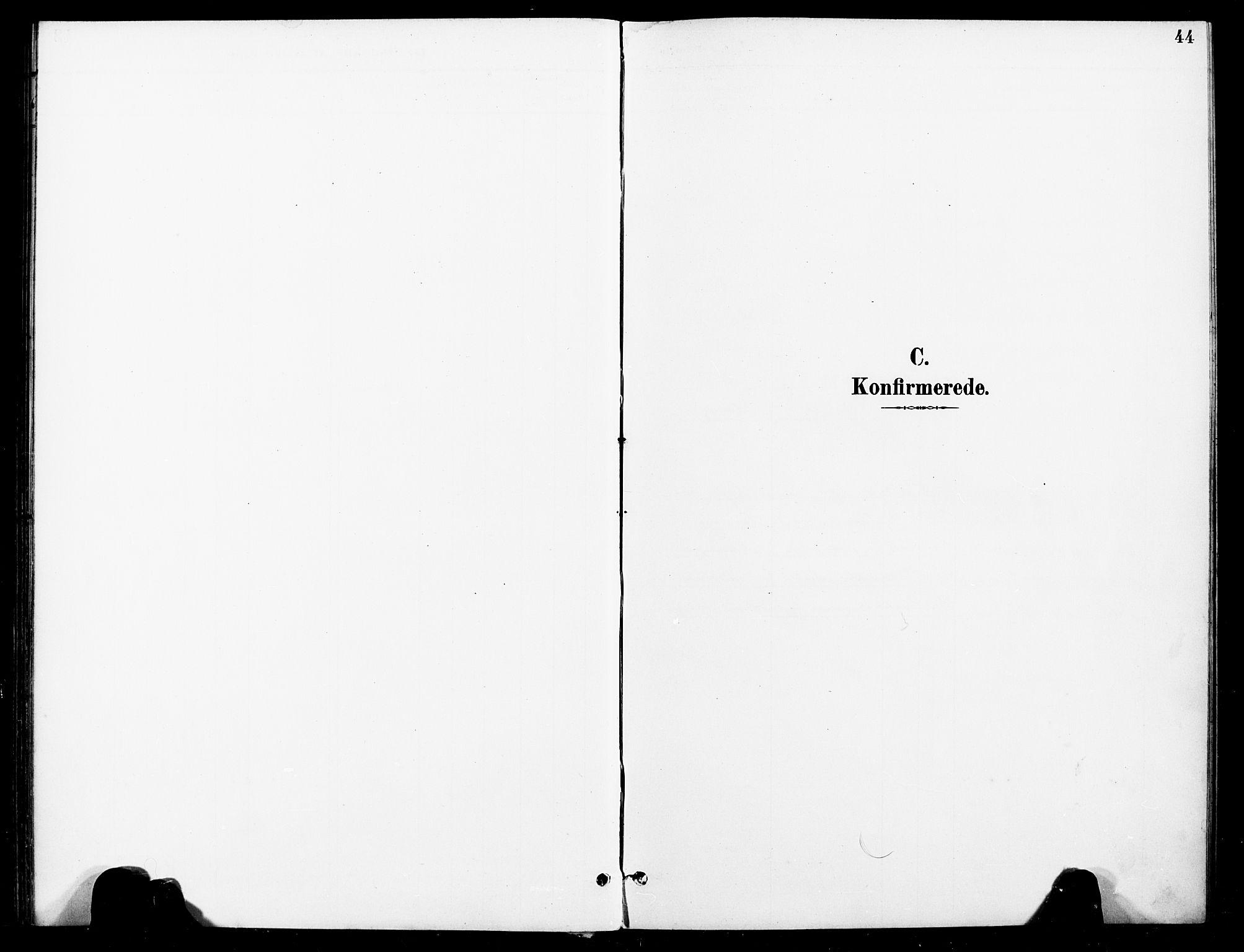 SAT, Ministerialprotokoller, klokkerbøker og fødselsregistre - Nord-Trøndelag, 740/L0379: Ministerialbok nr. 740A02, 1895-1907, s. 44