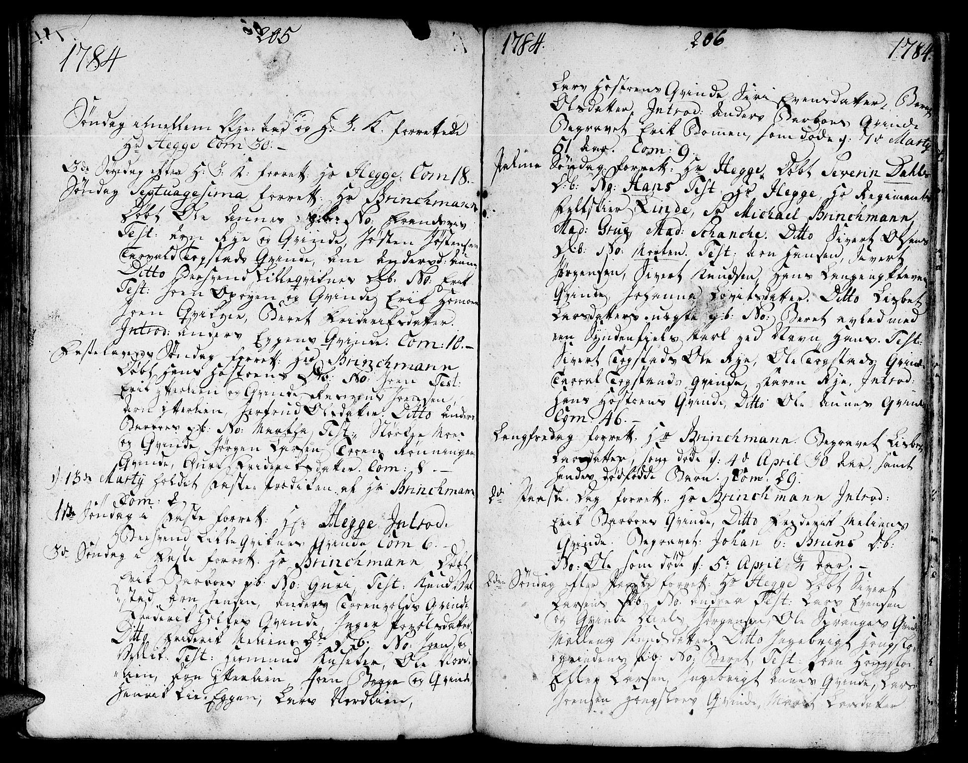 SAT, Ministerialprotokoller, klokkerbøker og fødselsregistre - Sør-Trøndelag, 671/L0840: Ministerialbok nr. 671A02, 1756-1794, s. 305-306