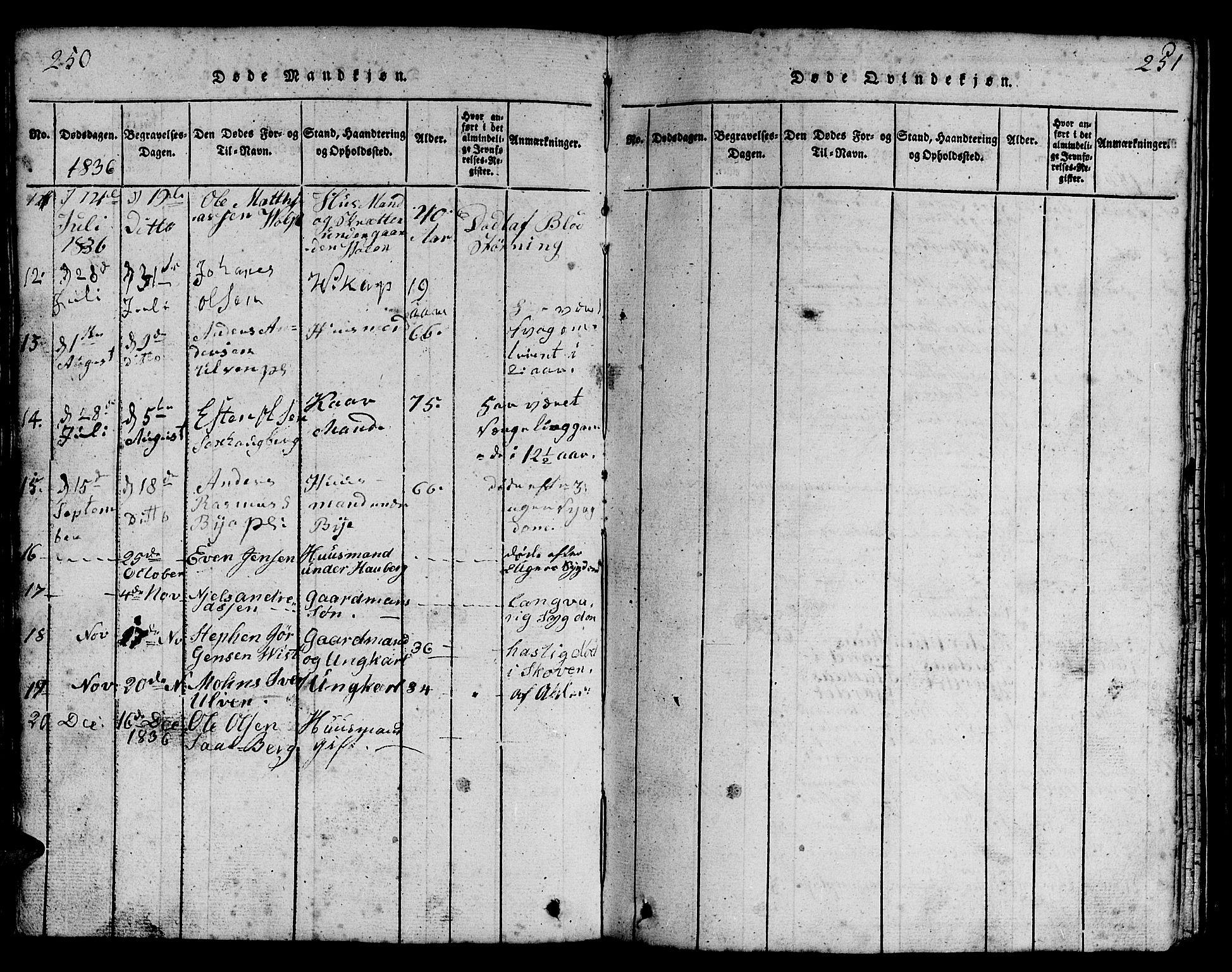 SAT, Ministerialprotokoller, klokkerbøker og fødselsregistre - Nord-Trøndelag, 730/L0298: Klokkerbok nr. 730C01, 1816-1849, s. 250-251