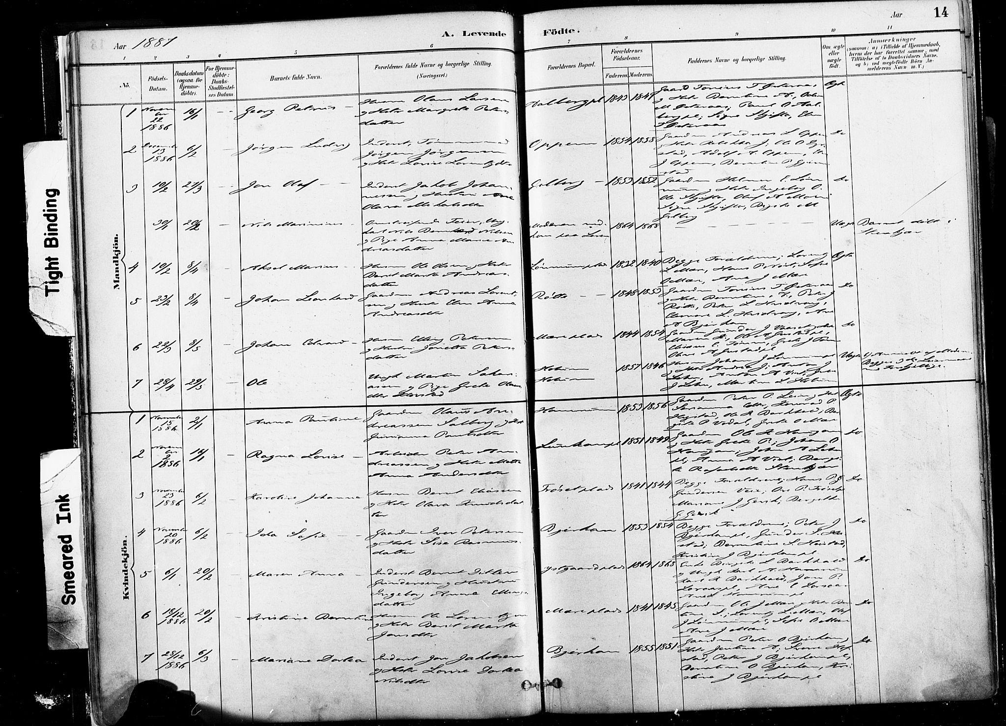 SAT, Ministerialprotokoller, klokkerbøker og fødselsregistre - Nord-Trøndelag, 735/L0351: Ministerialbok nr. 735A10, 1884-1908, s. 14