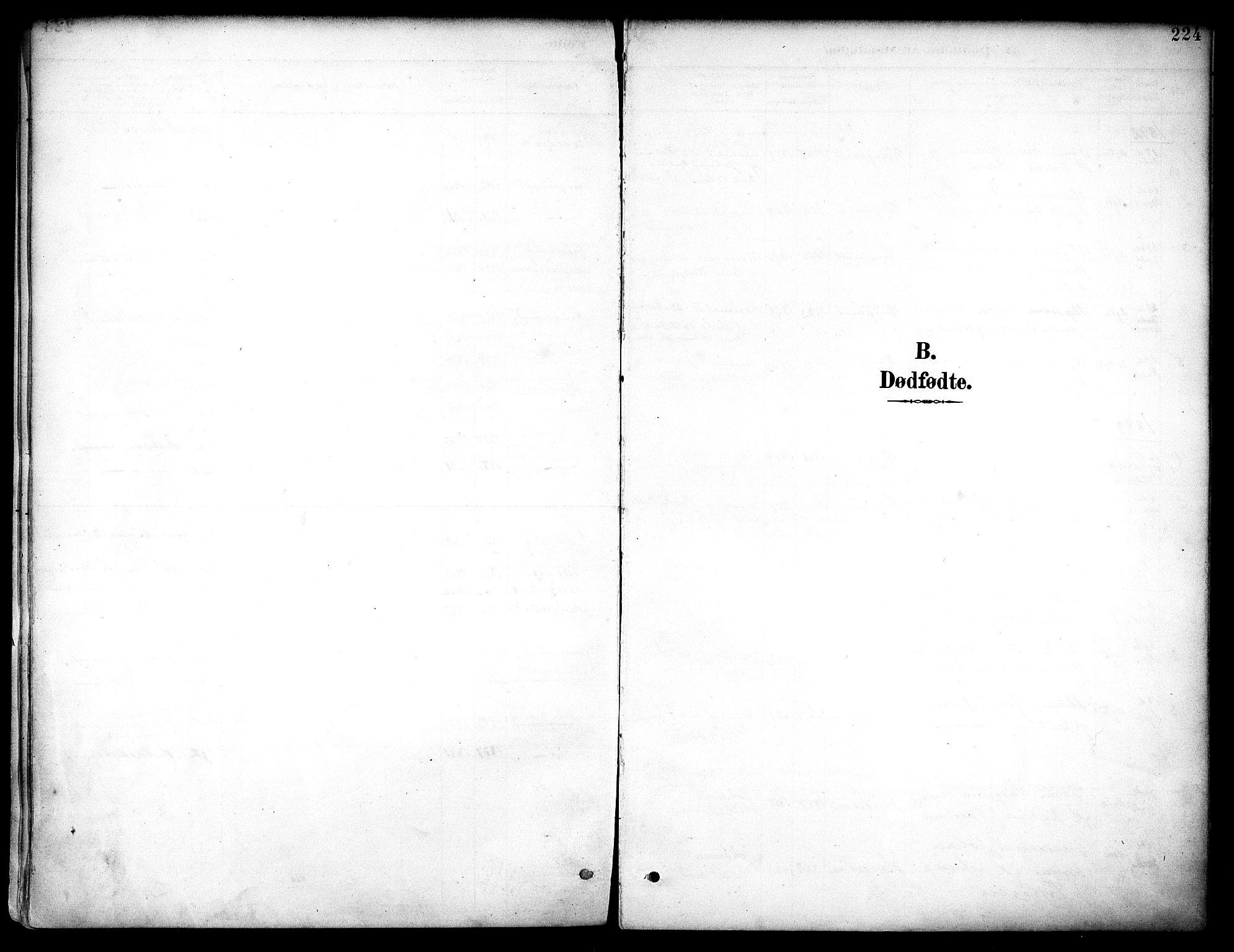 SAST, Haugesund sokneprestkontor, H/Ha/Haa/L0006: Ministerialbok nr. A 6, 1891-1907, s. 224