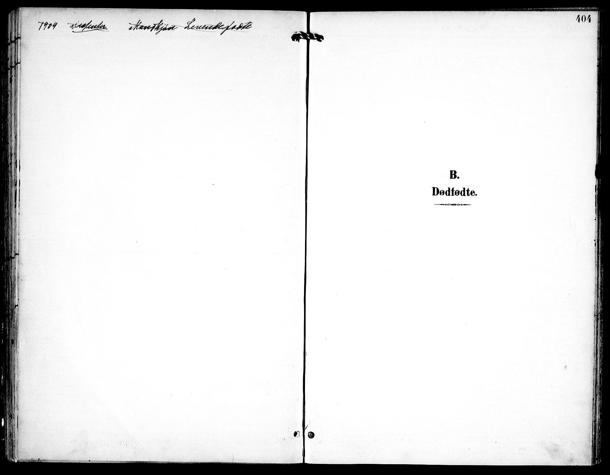 SAO, Petrus prestekontor Kirkebøker, F/Fa/L0008: Ministerialbok nr. 8, 1899-1909, s. 404