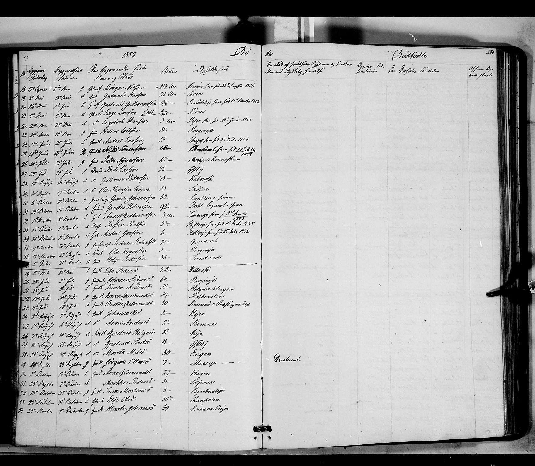 SAH, Jevnaker prestekontor, Ministerialbok nr. 7, 1858-1876, s. 220