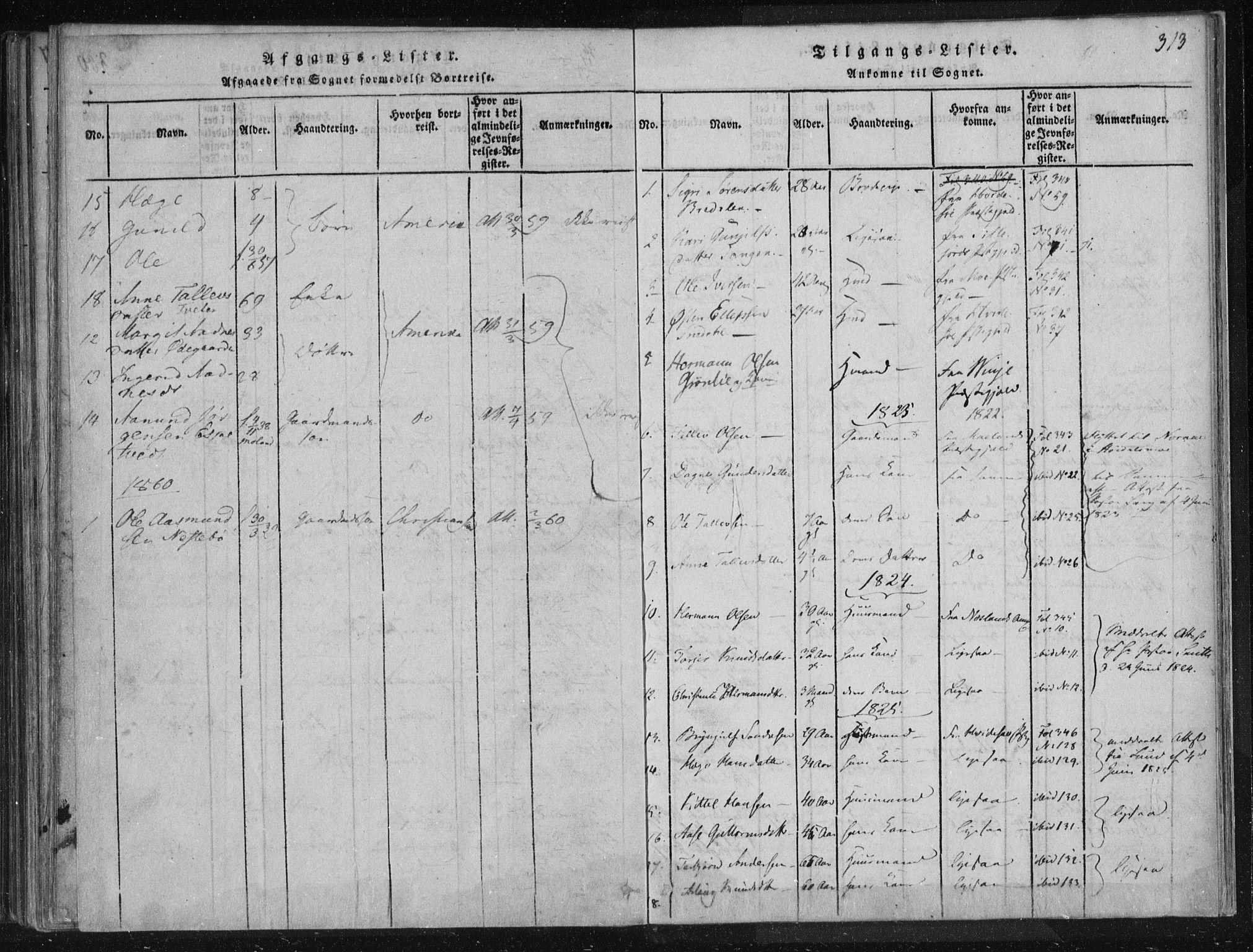 SAKO, Lårdal kirkebøker, F/Fc/L0001: Ministerialbok nr. III 1, 1815-1860, s. 313