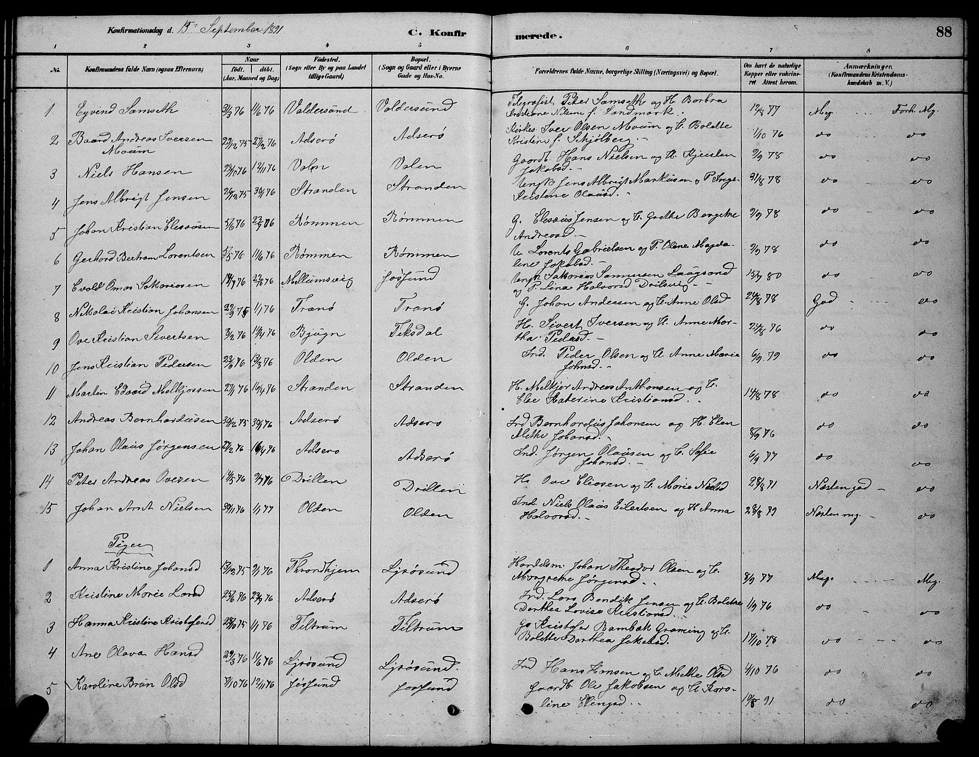 SAT, Ministerialprotokoller, klokkerbøker og fødselsregistre - Sør-Trøndelag, 654/L0665: Klokkerbok nr. 654C01, 1879-1901, s. 88