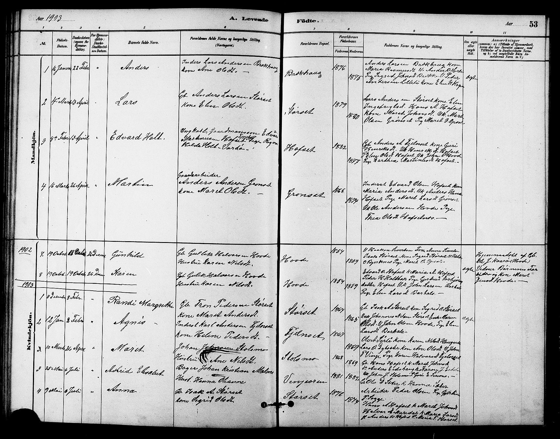 SAT, Ministerialprotokoller, klokkerbøker og fødselsregistre - Sør-Trøndelag, 631/L0514: Klokkerbok nr. 631C02, 1879-1912, s. 53