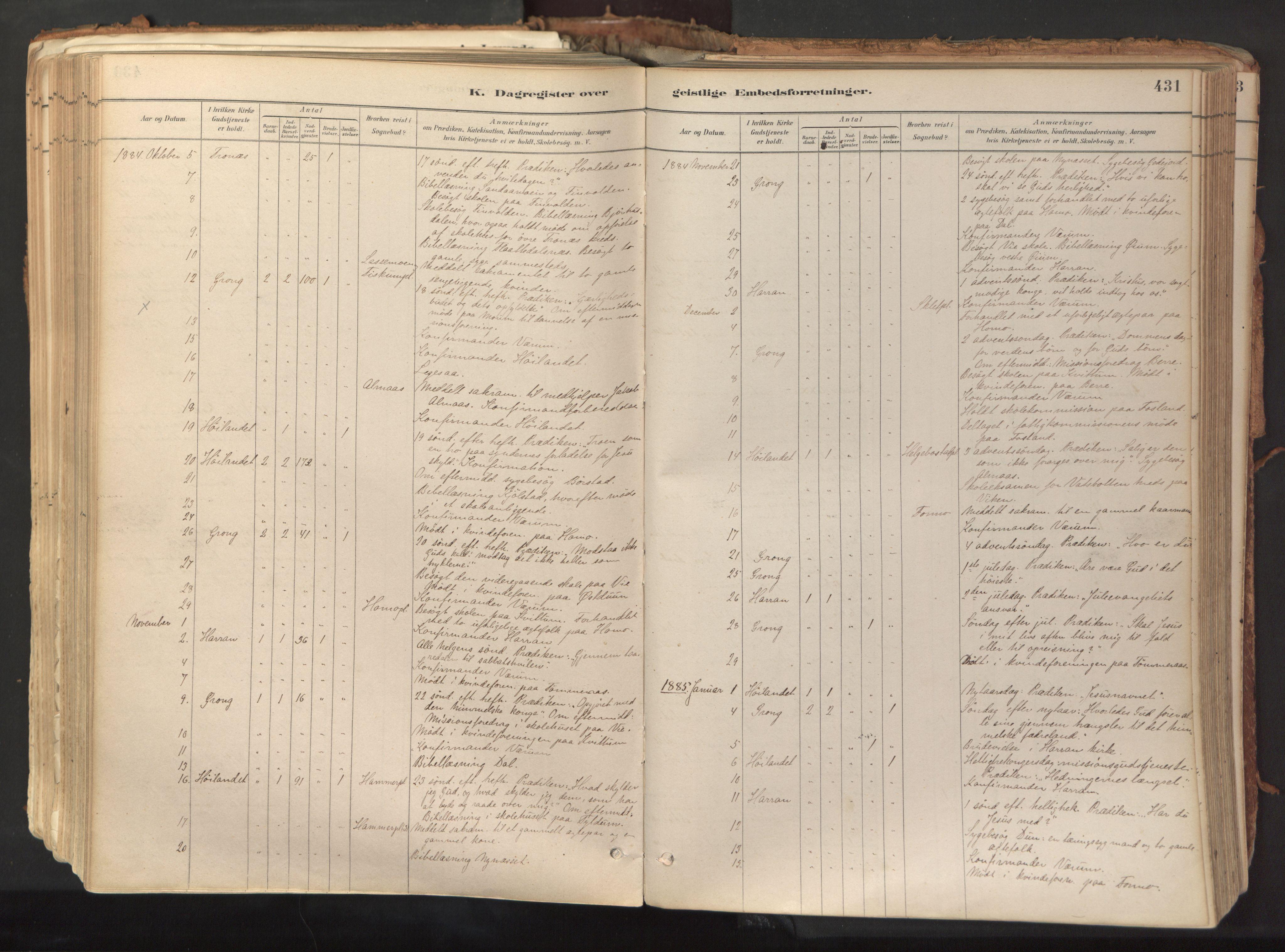 SAT, Ministerialprotokoller, klokkerbøker og fødselsregistre - Nord-Trøndelag, 758/L0519: Ministerialbok nr. 758A04, 1880-1926, s. 431