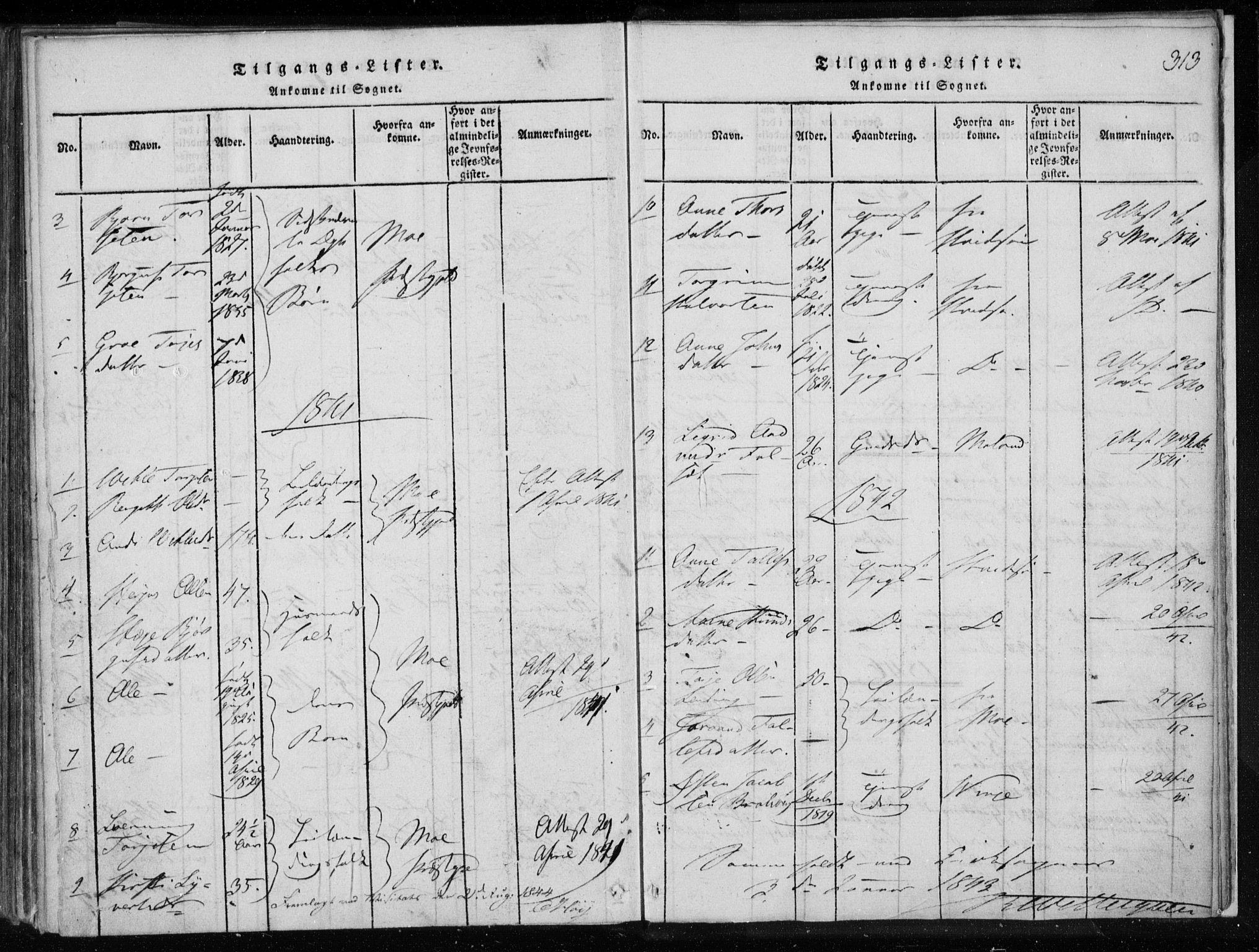 SAKO, Lårdal kirkebøker, F/Fa/L0005: Ministerialbok nr. I 5, 1815-1860, s. 313