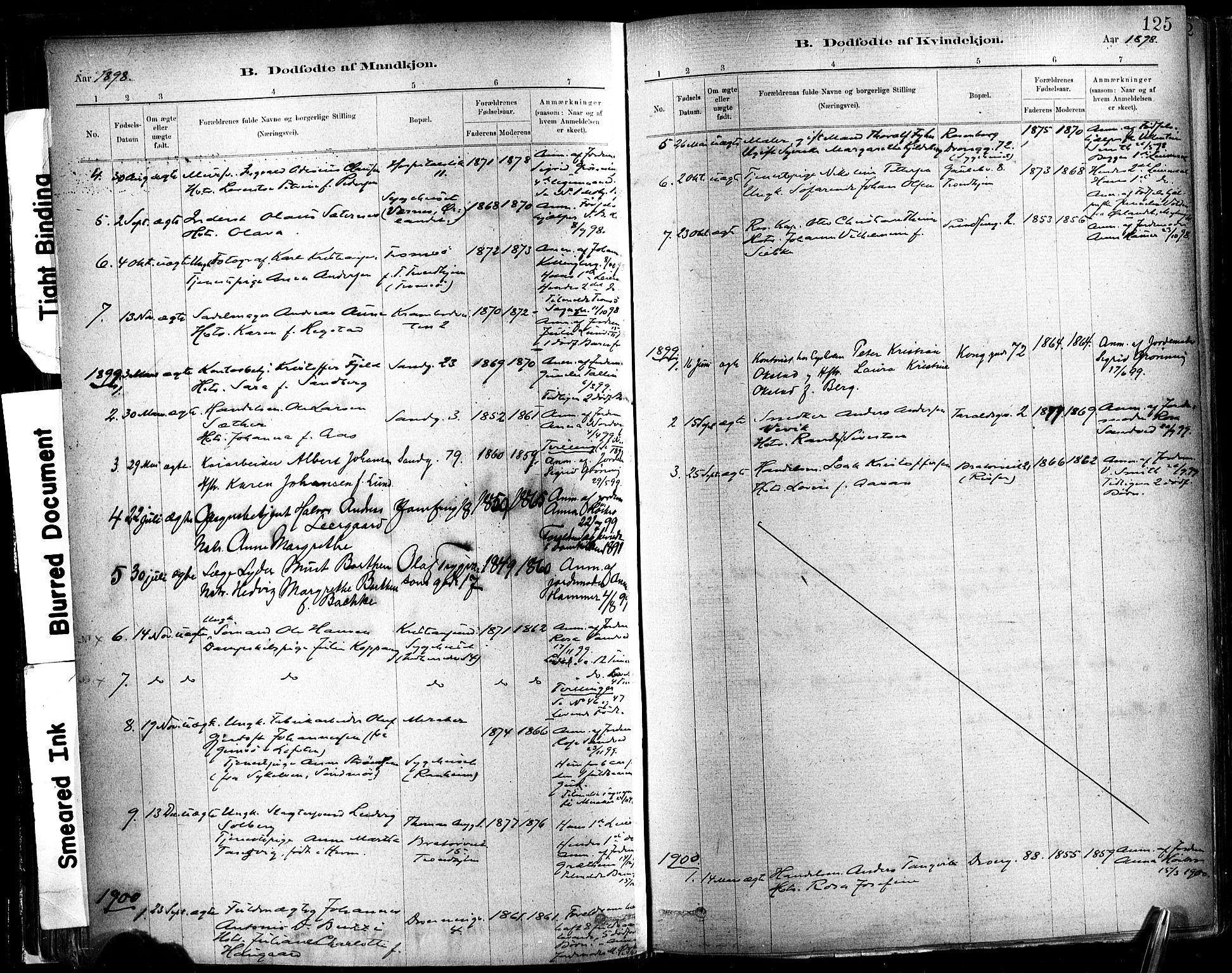 SAT, Ministerialprotokoller, klokkerbøker og fødselsregistre - Sør-Trøndelag, 602/L0119: Ministerialbok nr. 602A17, 1880-1901, s. 125