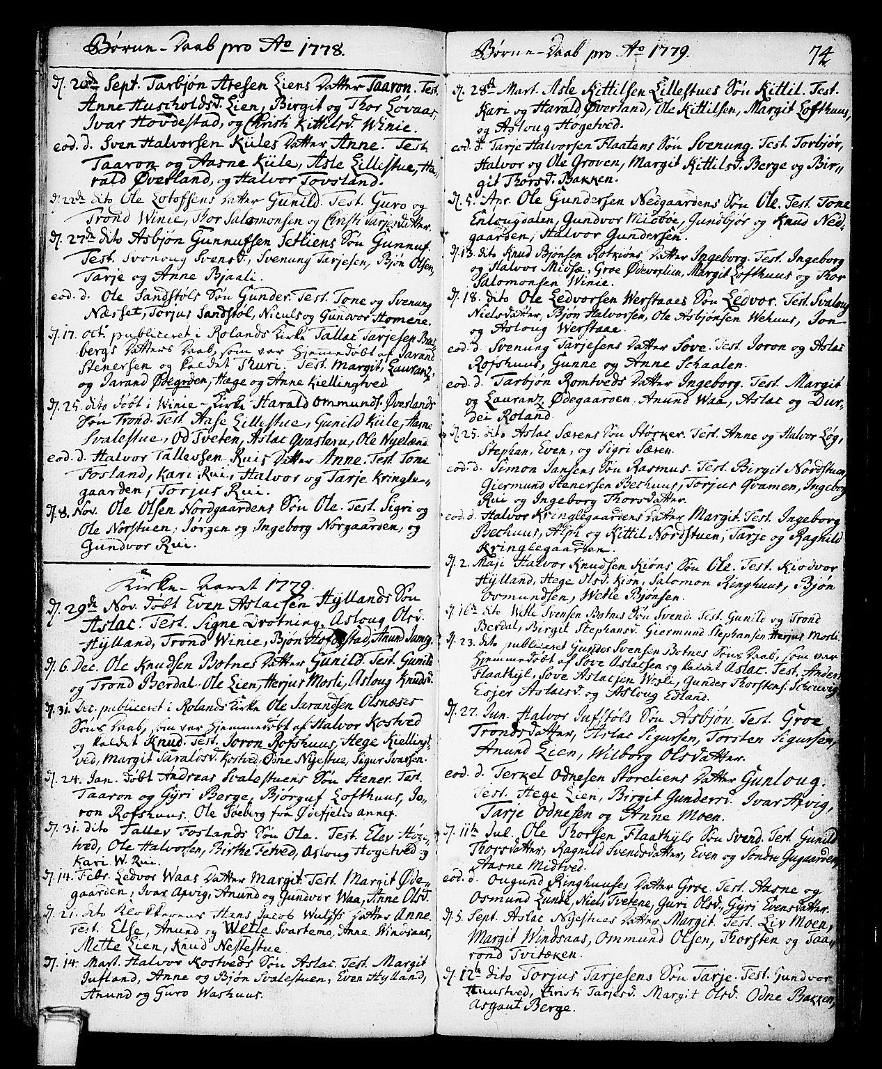 SAKO, Vinje kirkebøker, F/Fa/L0002: Ministerialbok nr. I 2, 1767-1814, s. 74