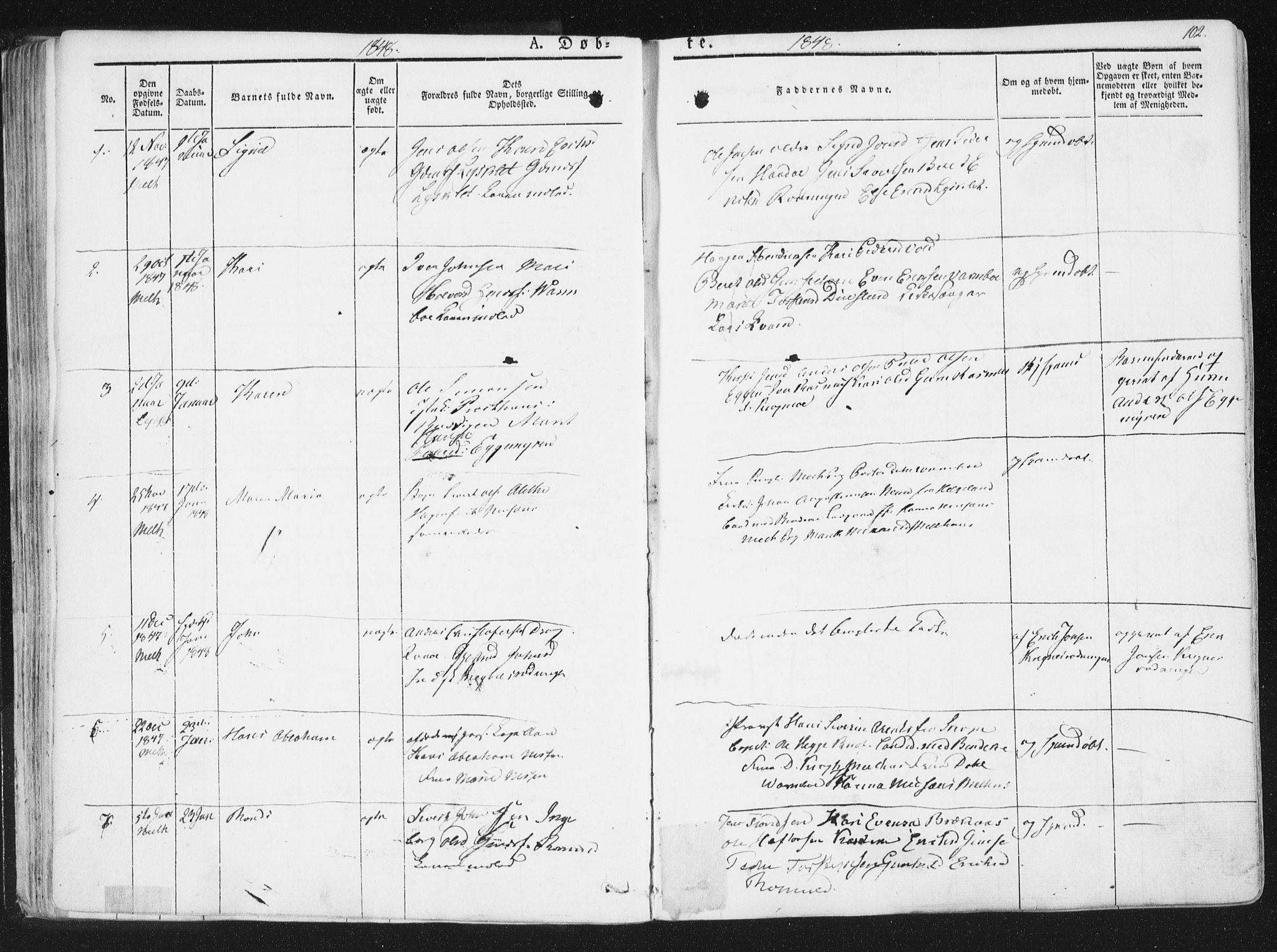 SAT, Ministerialprotokoller, klokkerbøker og fødselsregistre - Sør-Trøndelag, 691/L1074: Ministerialbok nr. 691A06, 1842-1852, s. 102