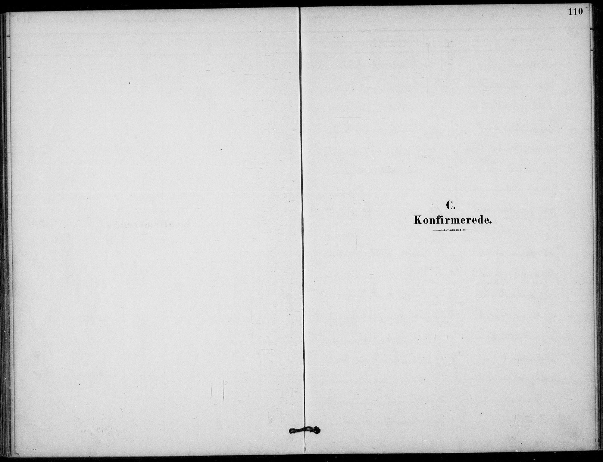 SAKO, Hjartdal kirkebøker, F/Fb/L0002: Ministerialbok nr. II 2, 1880-1932, s. 110