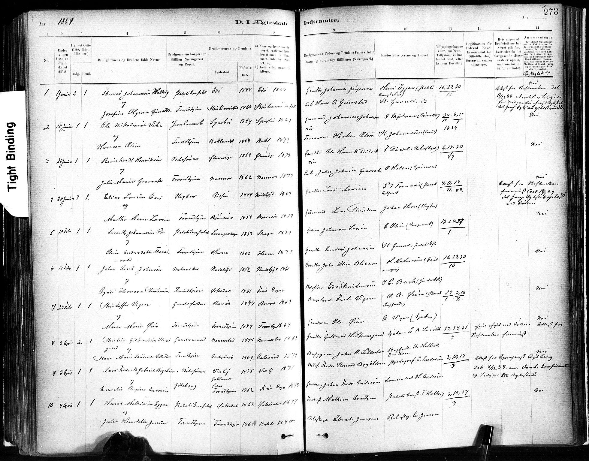 SAT, Ministerialprotokoller, klokkerbøker og fødselsregistre - Sør-Trøndelag, 602/L0119: Ministerialbok nr. 602A17, 1880-1901, s. 273