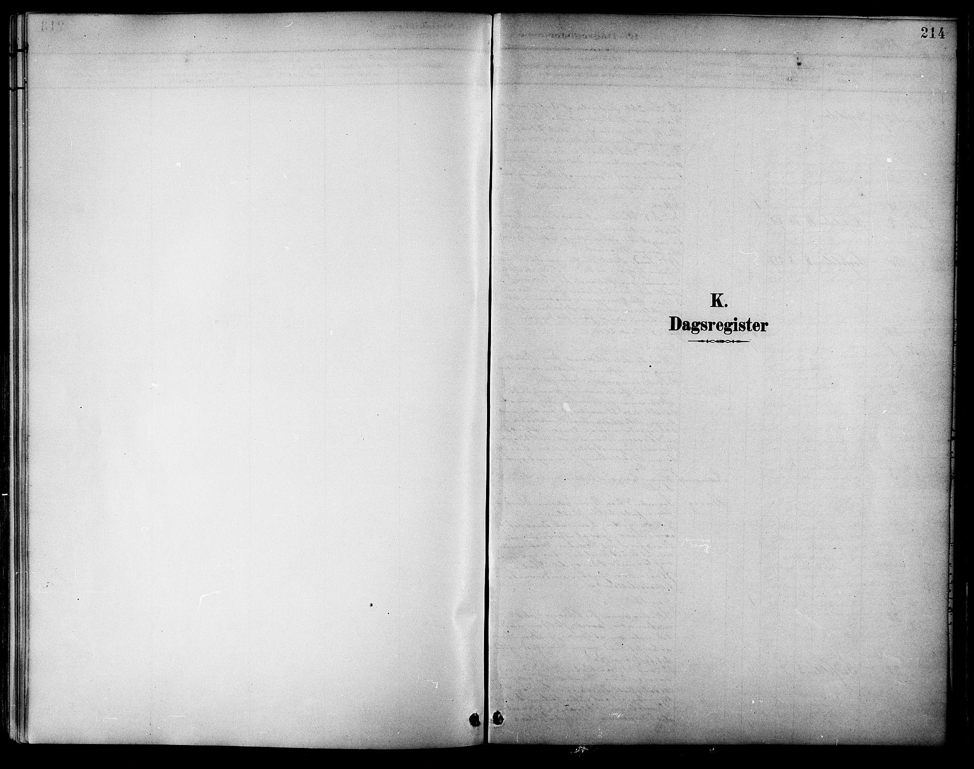 SAT, Ministerialprotokoller, klokkerbøker og fødselsregistre - Nordland, 854/L0777: Ministerialbok nr. 854A01 /1, 1883-1891, s. 214