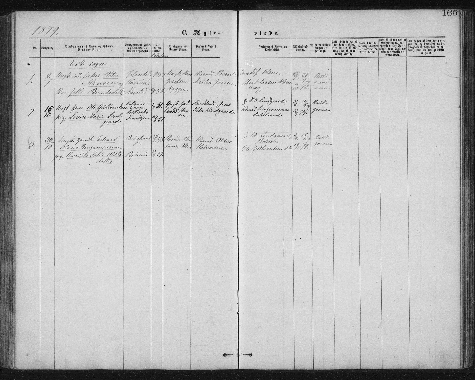 SAT, Ministerialprotokoller, klokkerbøker og fødselsregistre - Nord-Trøndelag, 771/L0596: Ministerialbok nr. 771A03, 1870-1884, s. 165