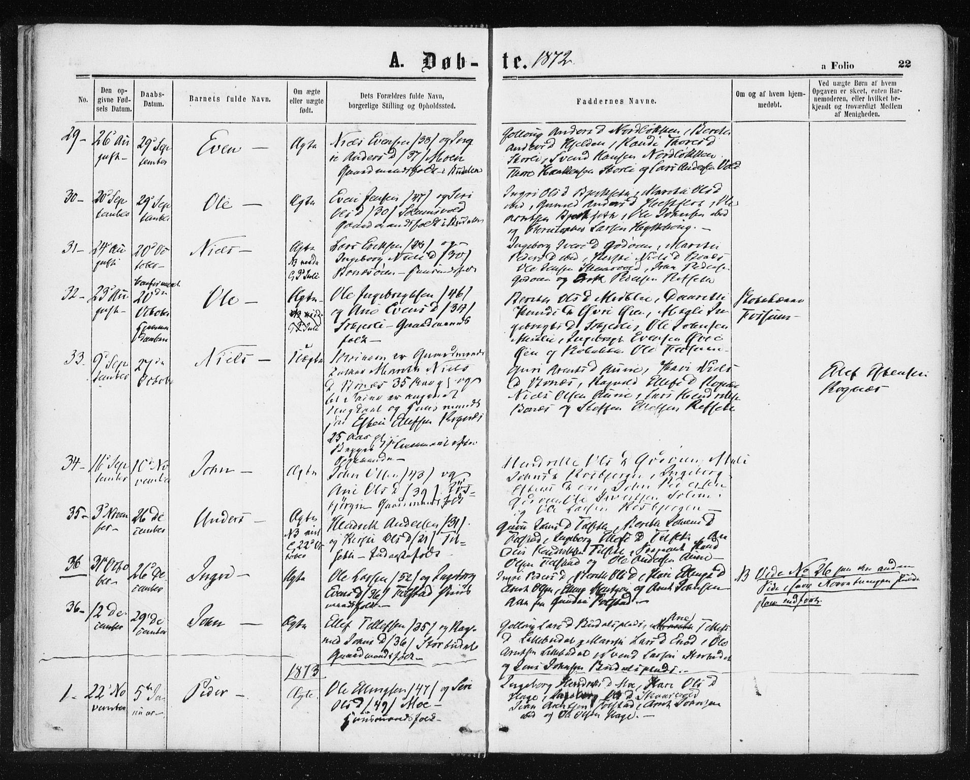 SAT, Ministerialprotokoller, klokkerbøker og fødselsregistre - Sør-Trøndelag, 687/L1001: Ministerialbok nr. 687A07, 1863-1878, s. 22