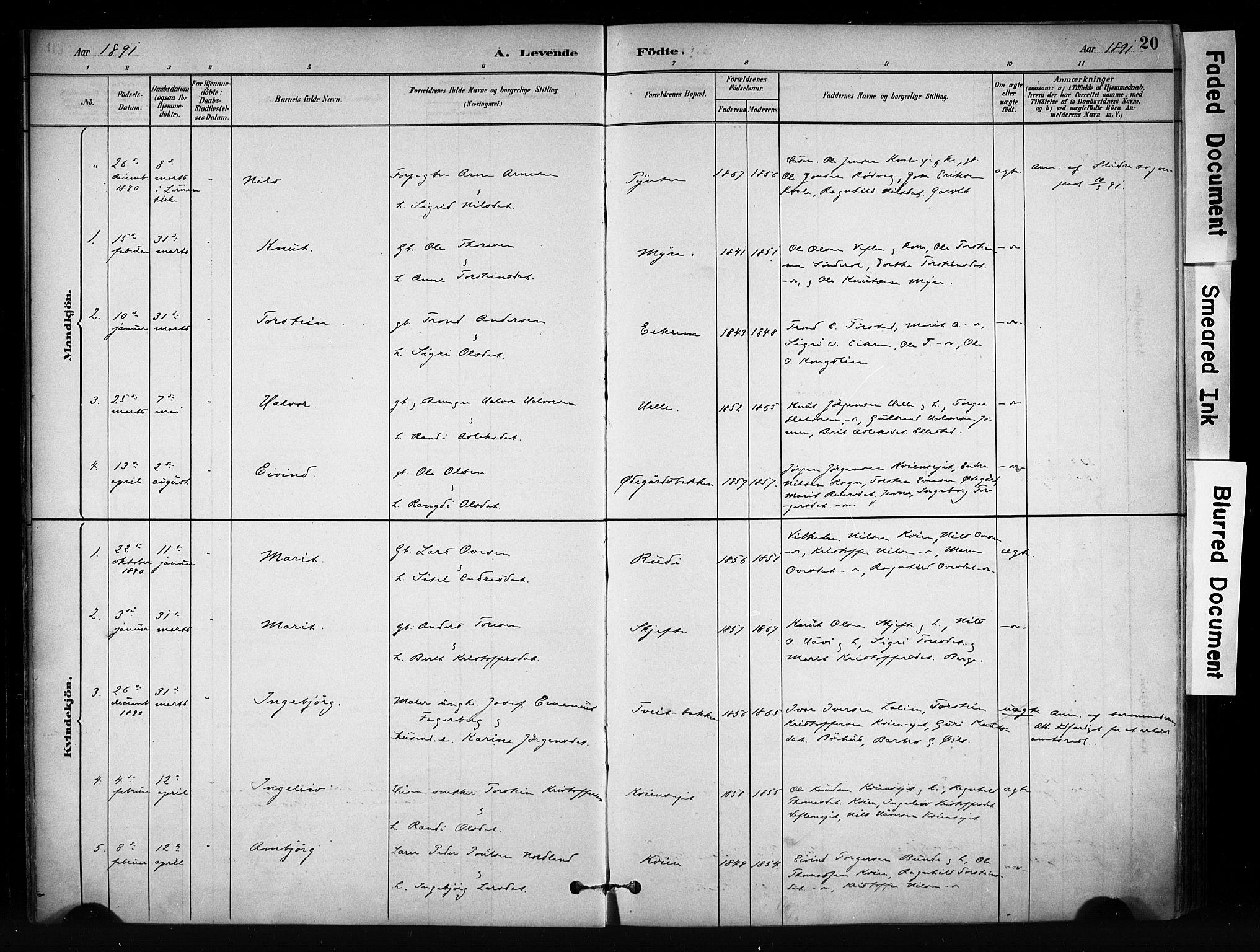 SAH, Vang prestekontor, Valdres, Ministerialbok nr. 9, 1882-1914, s. 20