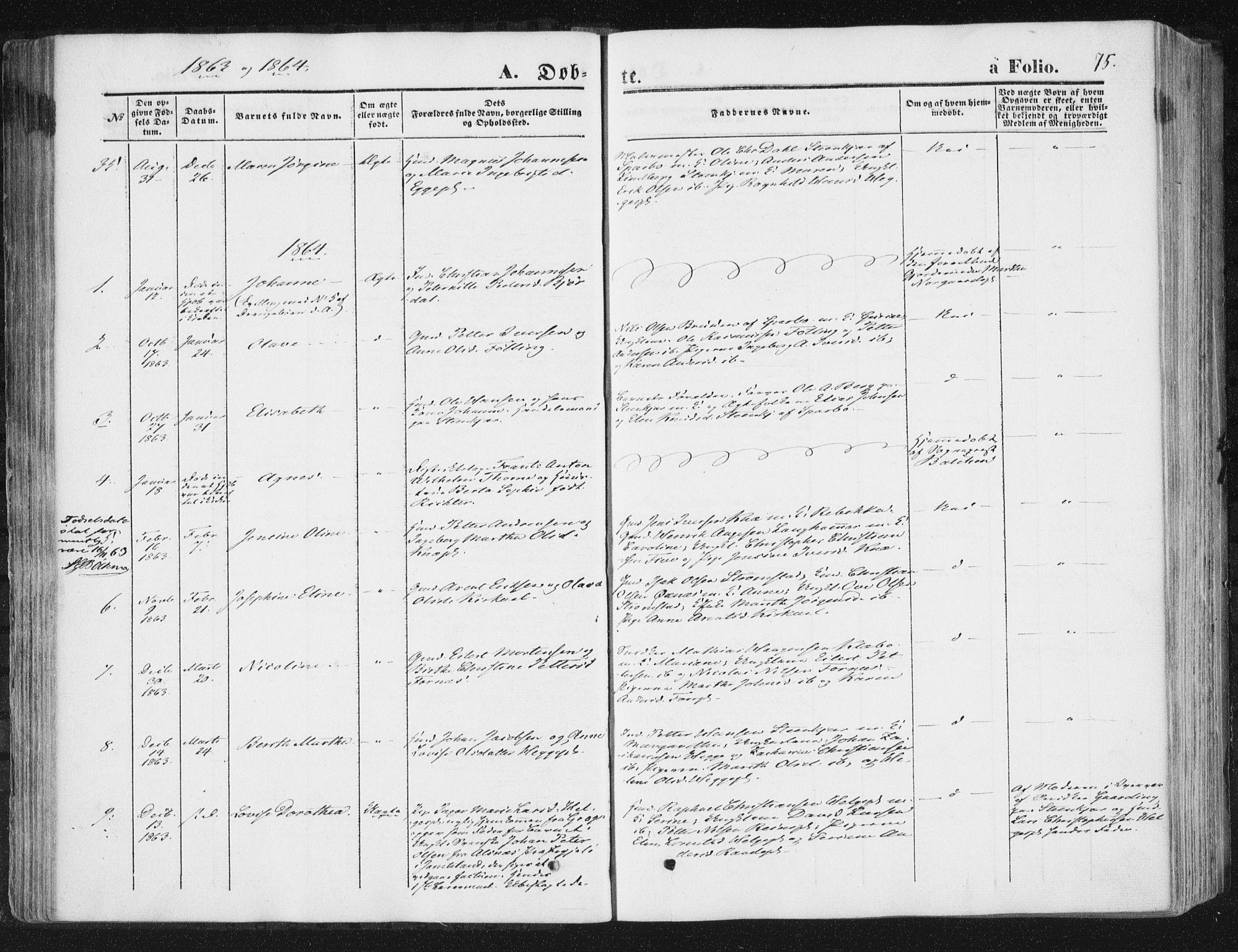 SAT, Ministerialprotokoller, klokkerbøker og fødselsregistre - Nord-Trøndelag, 746/L0447: Ministerialbok nr. 746A06, 1860-1877, s. 75