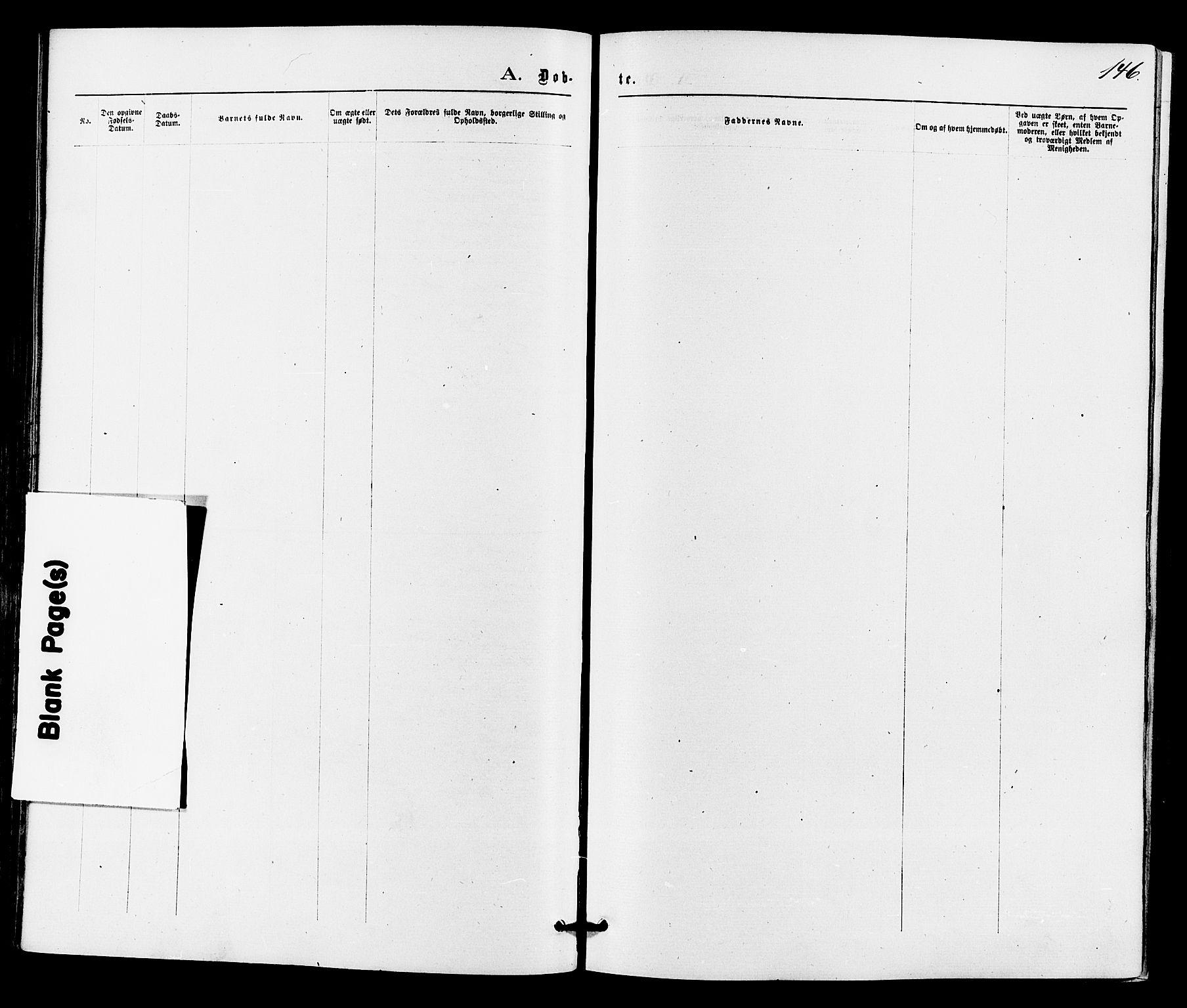 SAKO, Drangedal kirkebøker, F/Fa/L0009: Ministerialbok nr. 9 /1, 1872-1884, s. 146