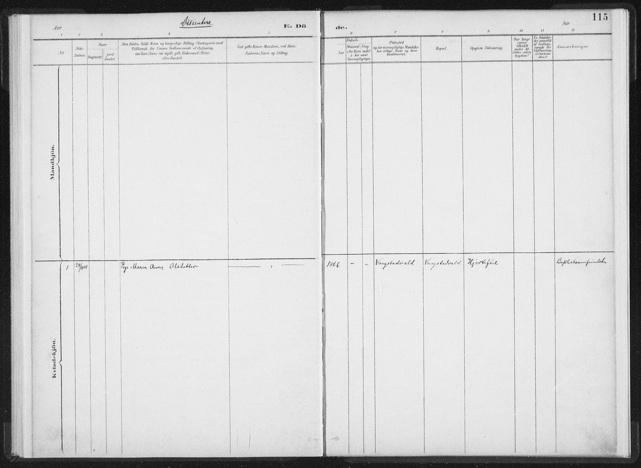 SAT, Ministerialprotokoller, klokkerbøker og fødselsregistre - Nord-Trøndelag, 724/L0263: Ministerialbok nr. 724A01, 1891-1907, s. 115