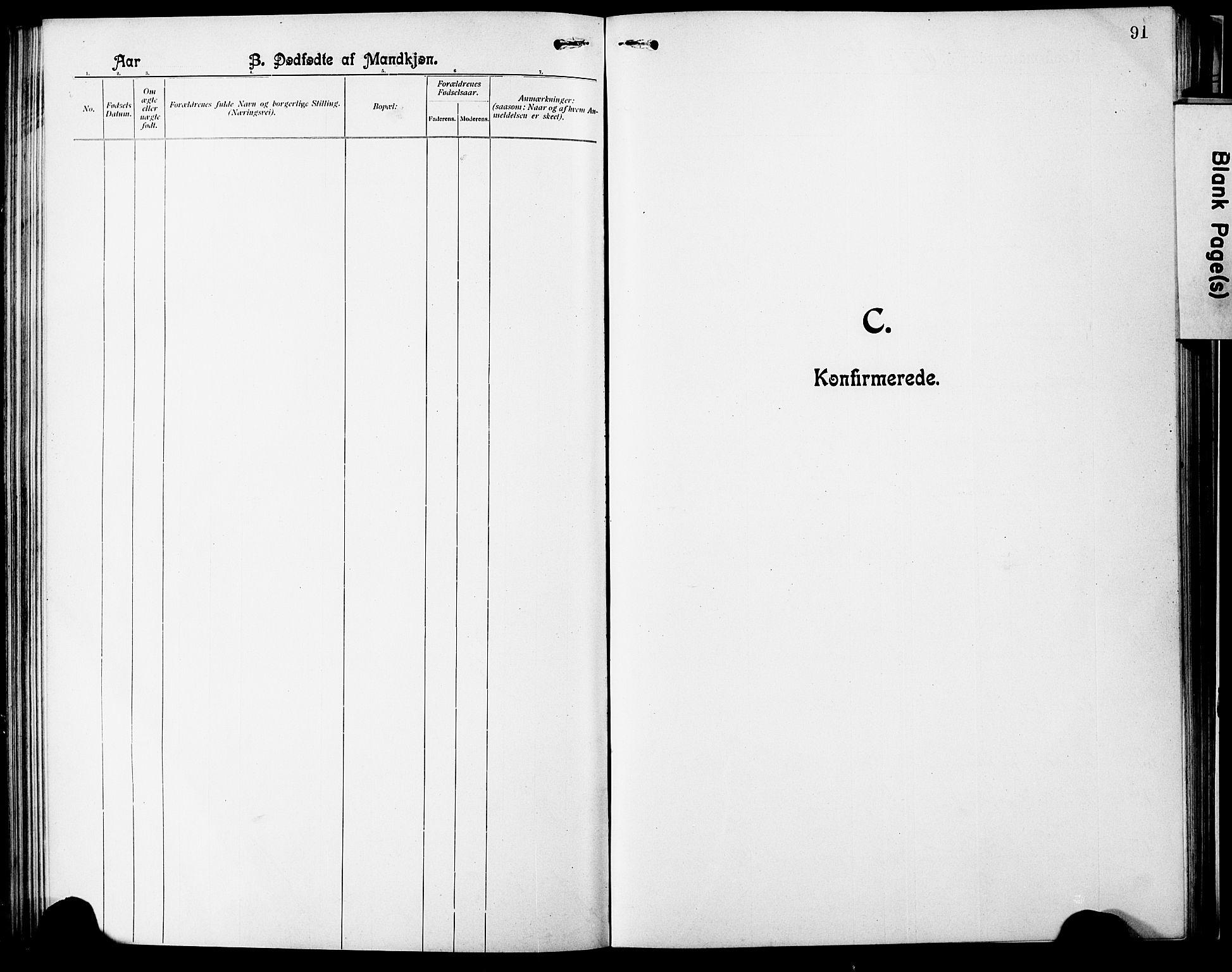SAT, Ministerialprotokoller, klokkerbøker og fødselsregistre - Nordland, 803/L0077: Klokkerbok nr. 803C04, 1897-1930, s. 91
