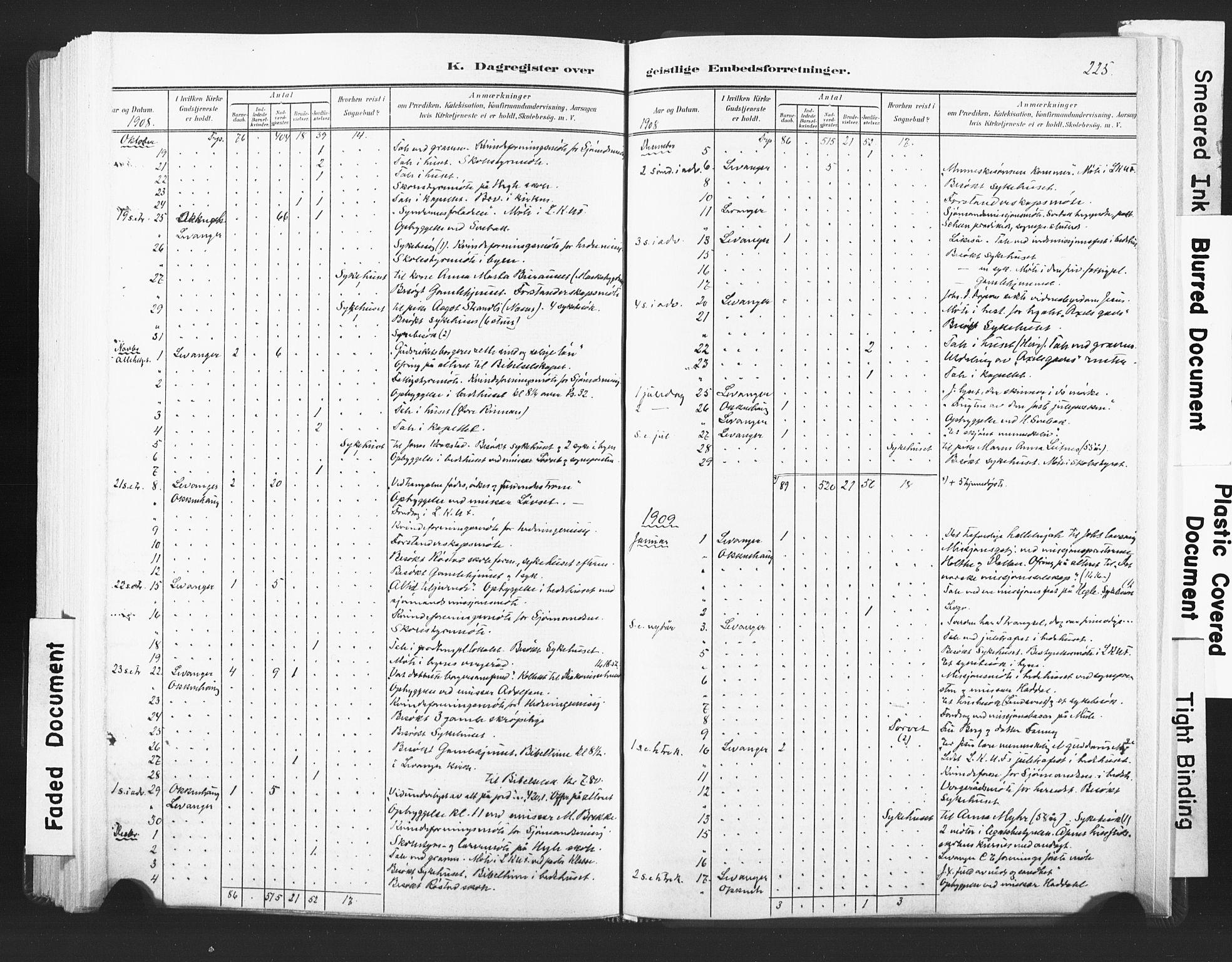 SAT, Ministerialprotokoller, klokkerbøker og fødselsregistre - Nord-Trøndelag, 720/L0189: Ministerialbok nr. 720A05, 1880-1911, s. 225