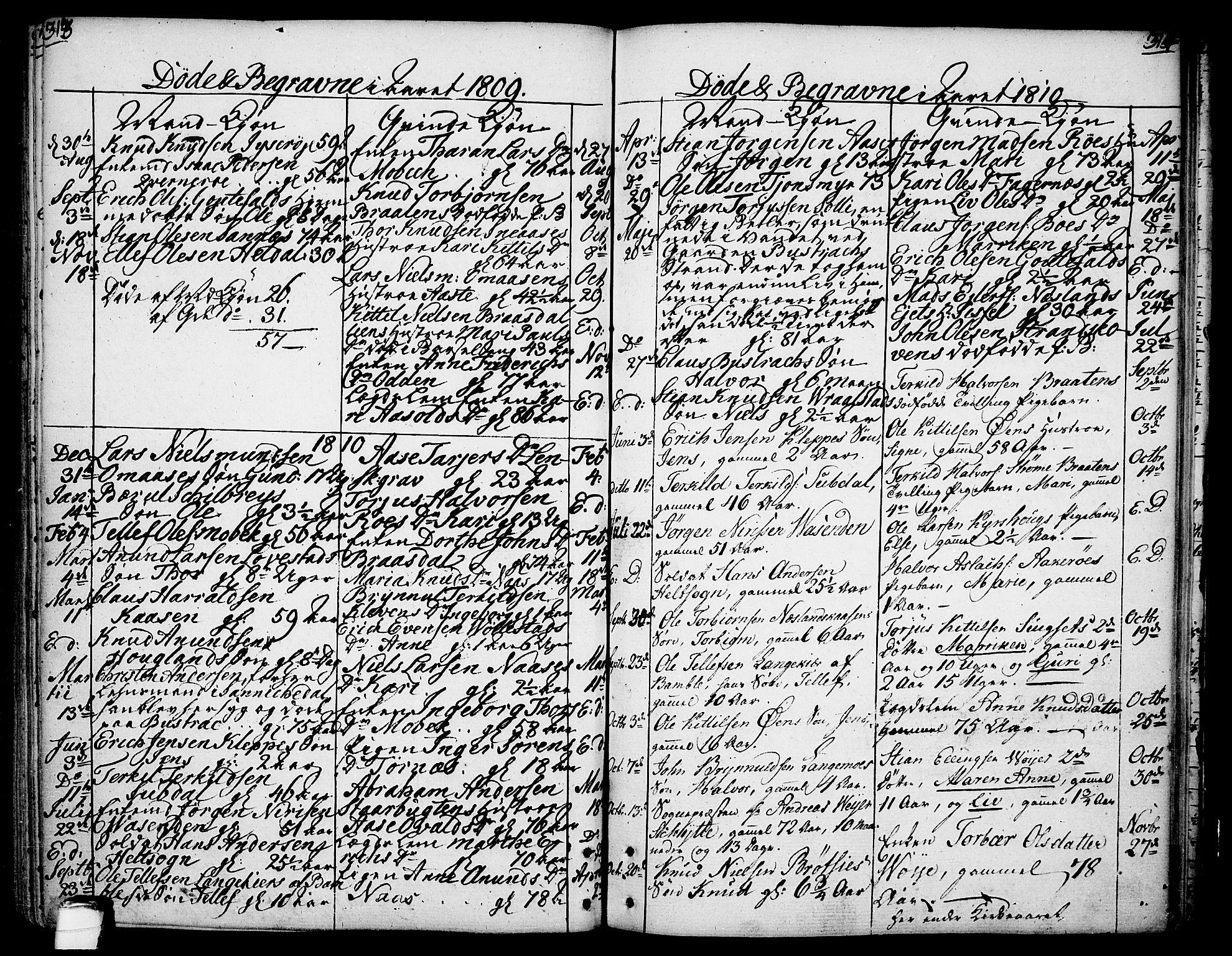 SAKO, Drangedal kirkebøker, F/Fa/L0003: Ministerialbok nr. 3, 1768-1814, s. 313-314