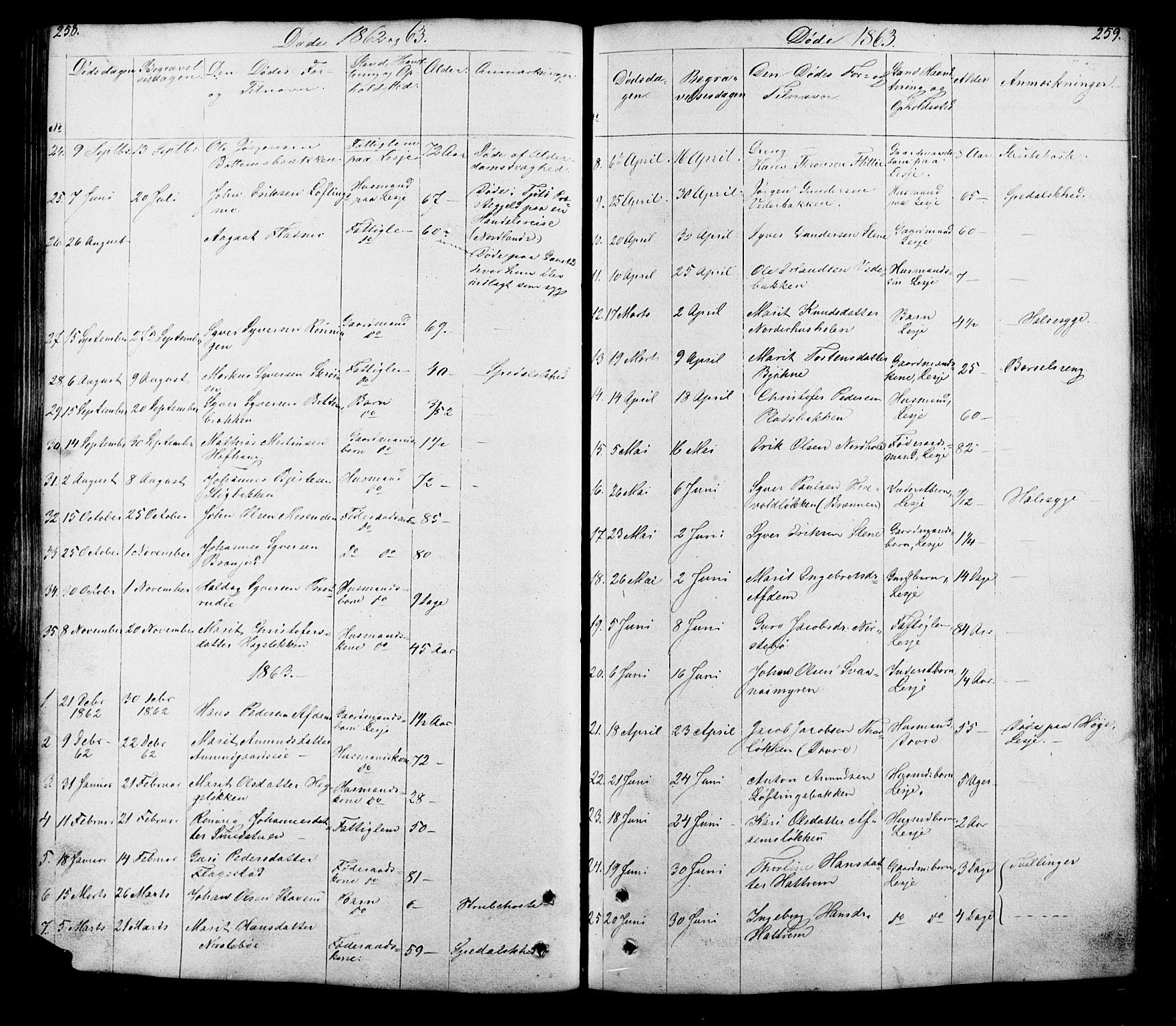 SAH, Lesja prestekontor, Klokkerbok nr. 5, 1850-1894, s. 258-259
