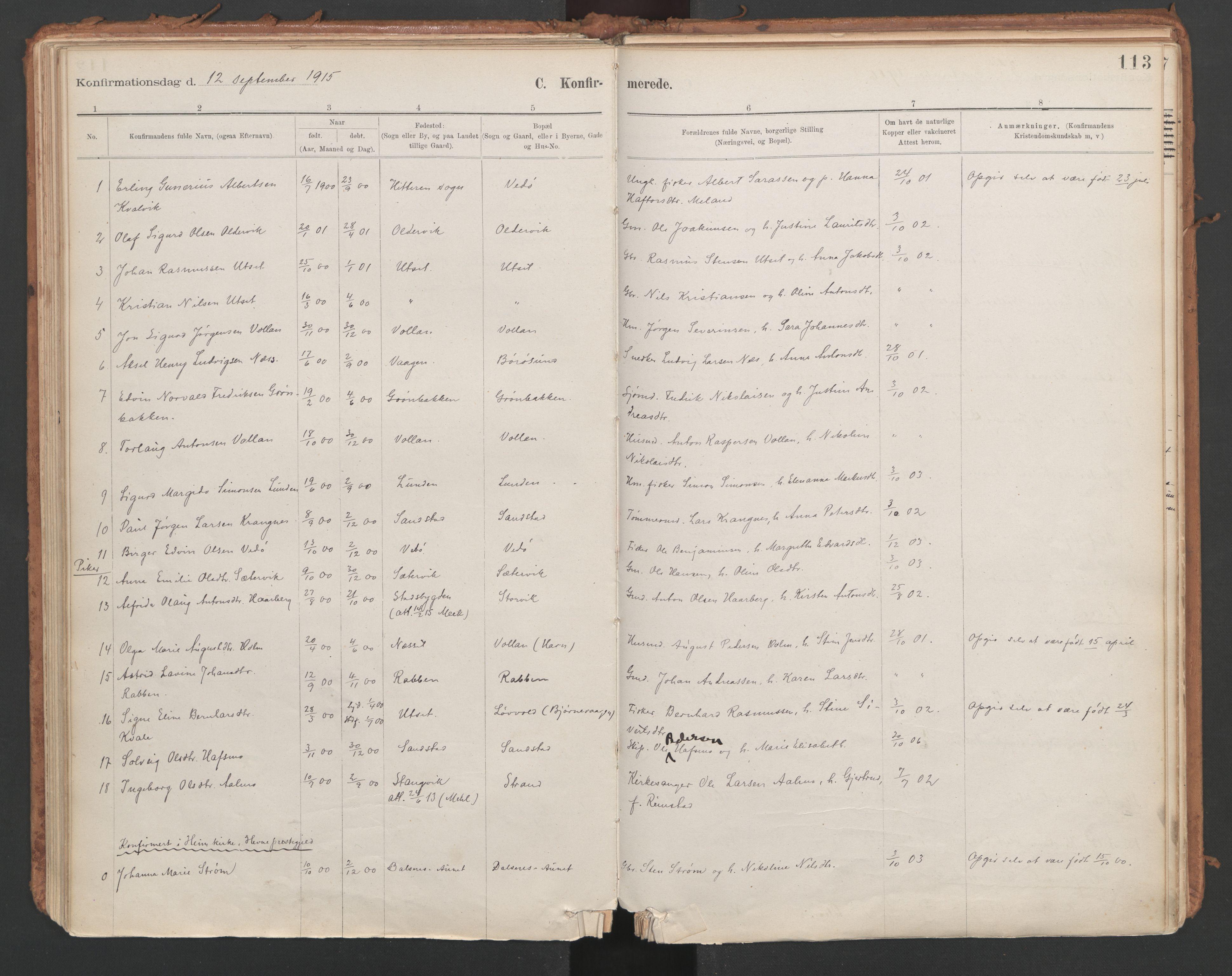 SAT, Ministerialprotokoller, klokkerbøker og fødselsregistre - Sør-Trøndelag, 639/L0572: Ministerialbok nr. 639A01, 1890-1920, s. 113