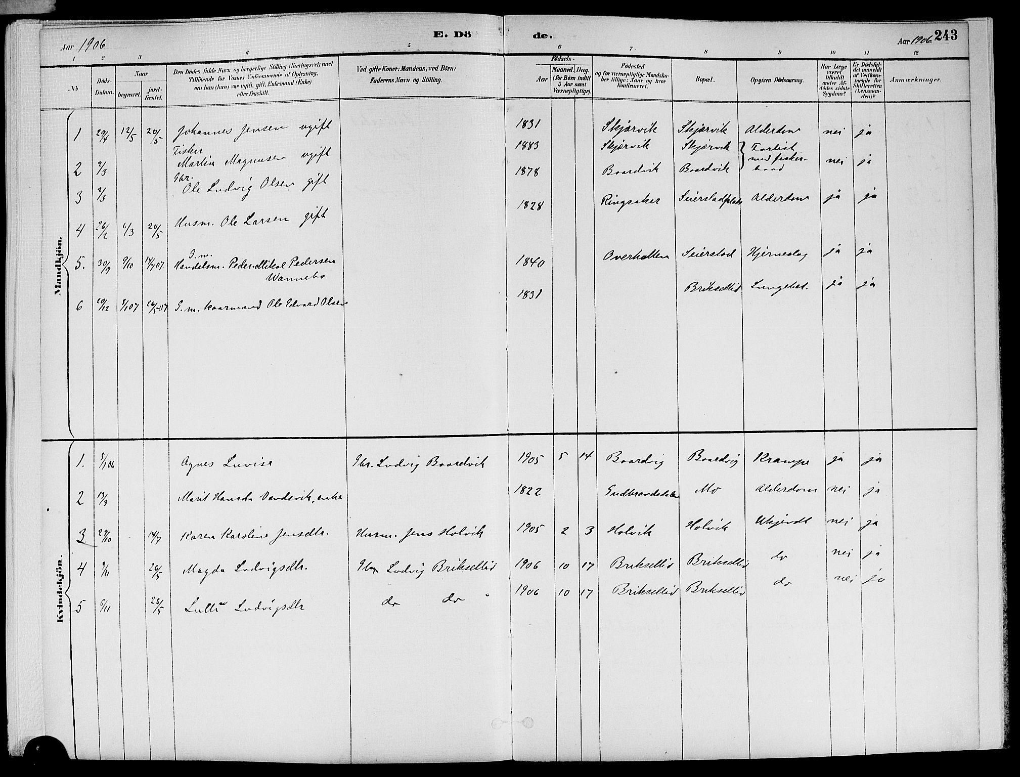 SAT, Ministerialprotokoller, klokkerbøker og fødselsregistre - Nord-Trøndelag, 773/L0617: Ministerialbok nr. 773A08, 1887-1910, s. 243