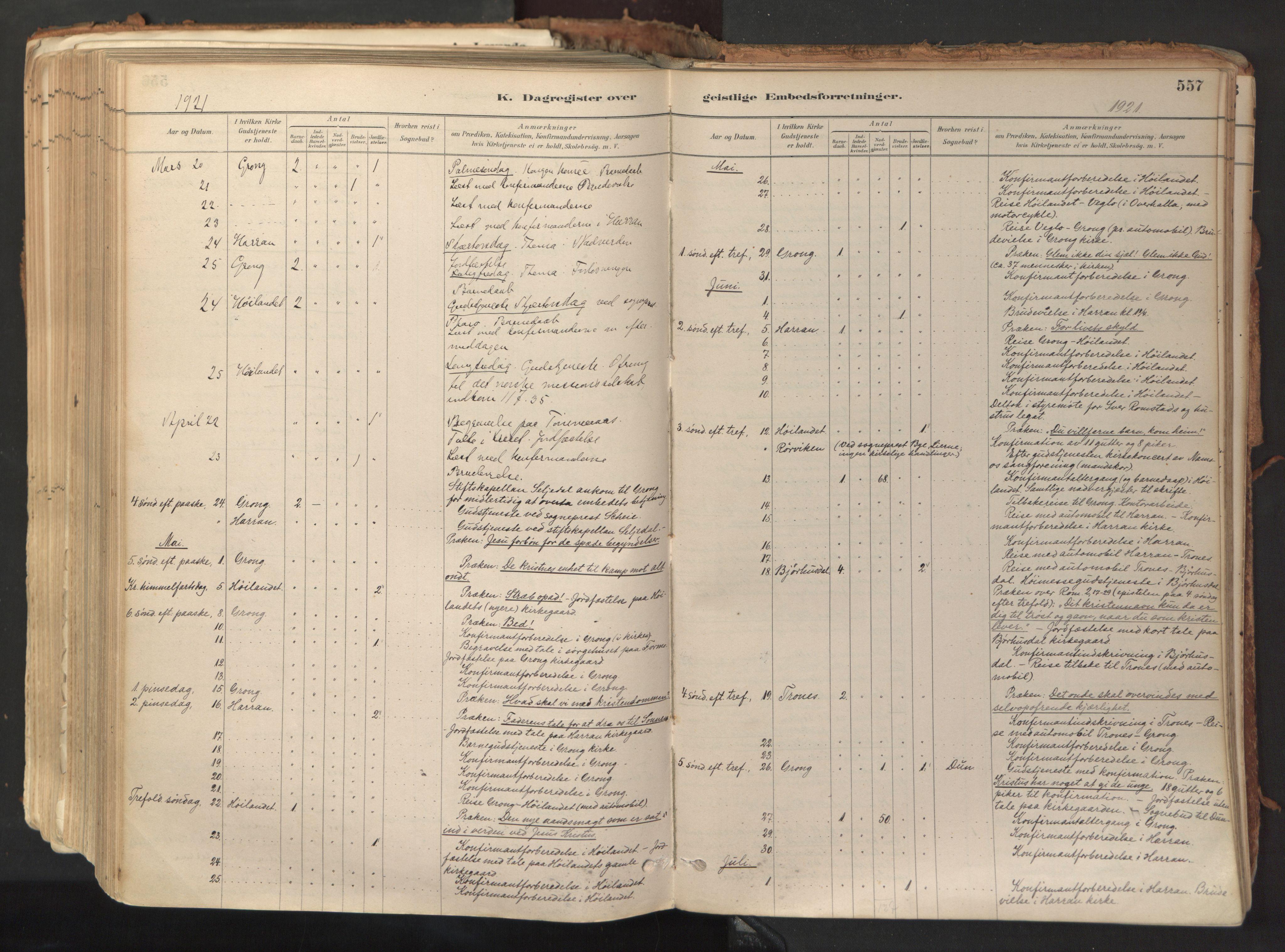 SAT, Ministerialprotokoller, klokkerbøker og fødselsregistre - Nord-Trøndelag, 758/L0519: Ministerialbok nr. 758A04, 1880-1926, s. 557
