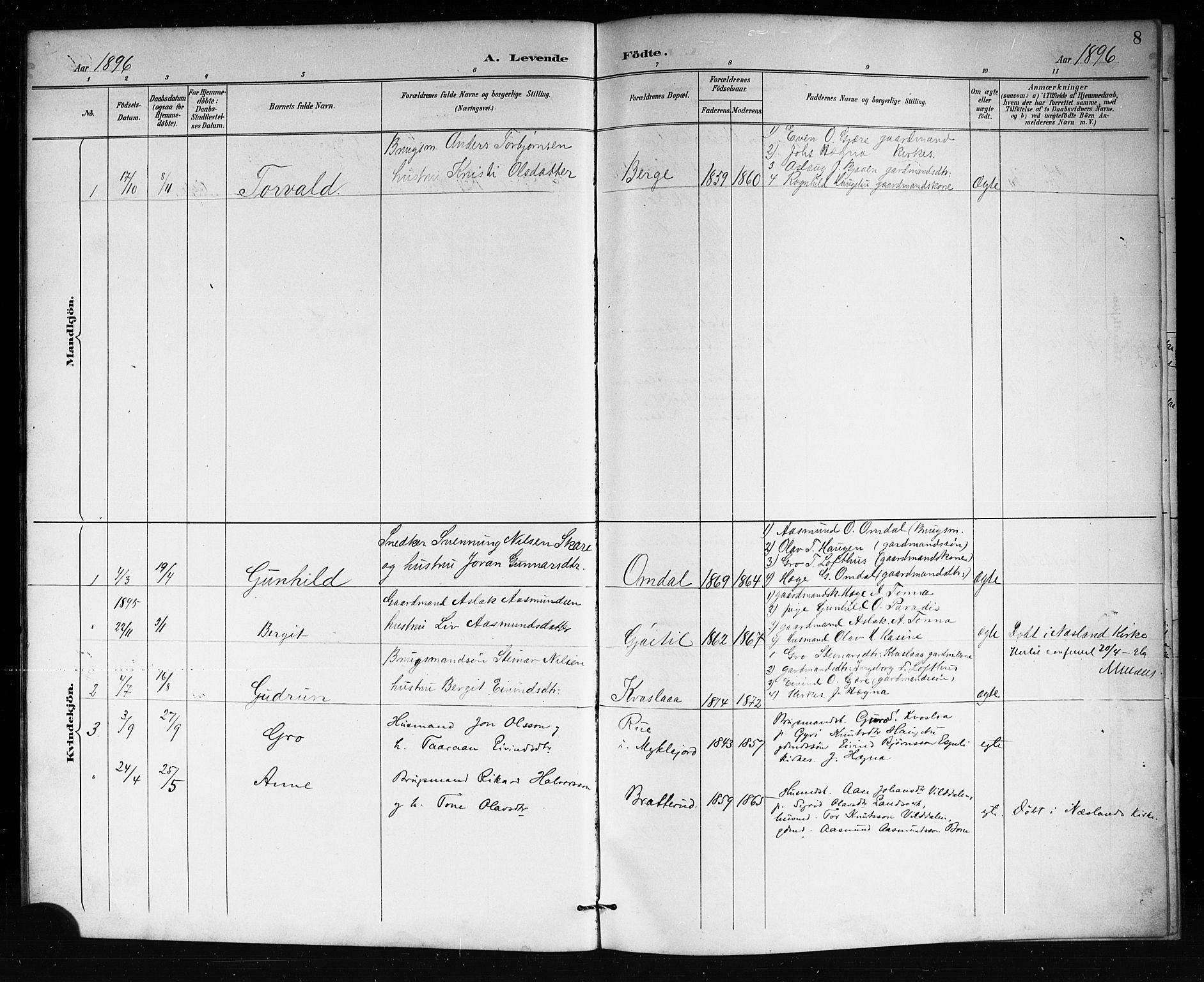 SAKO, Lårdal kirkebøker, G/Gb/L0003: Klokkerbok nr. II 3, 1889-1920, s. 8