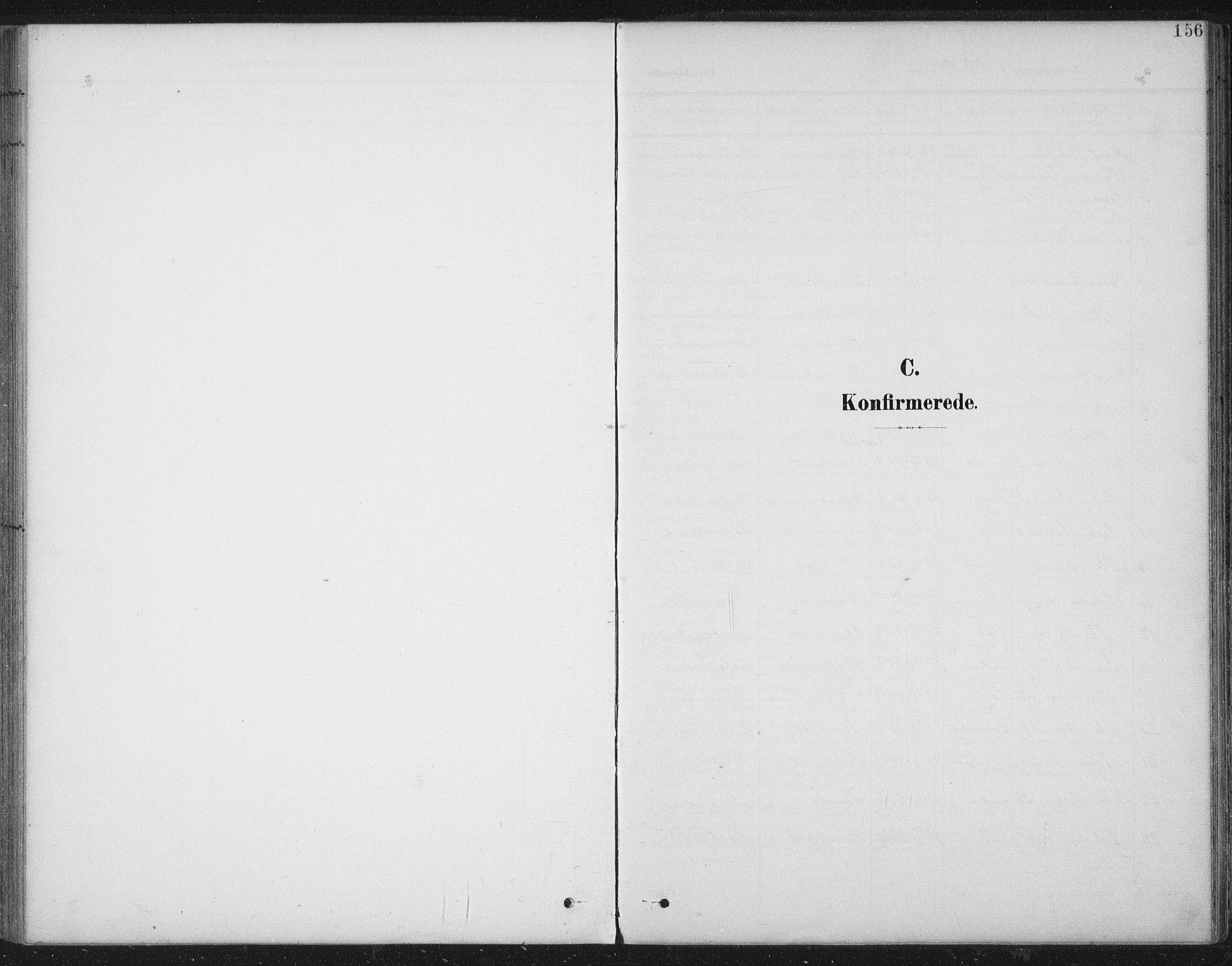 SAT, Ministerialprotokoller, klokkerbøker og fødselsregistre - Nord-Trøndelag, 724/L0269: Klokkerbok nr. 724C05, 1899-1920, s. 156
