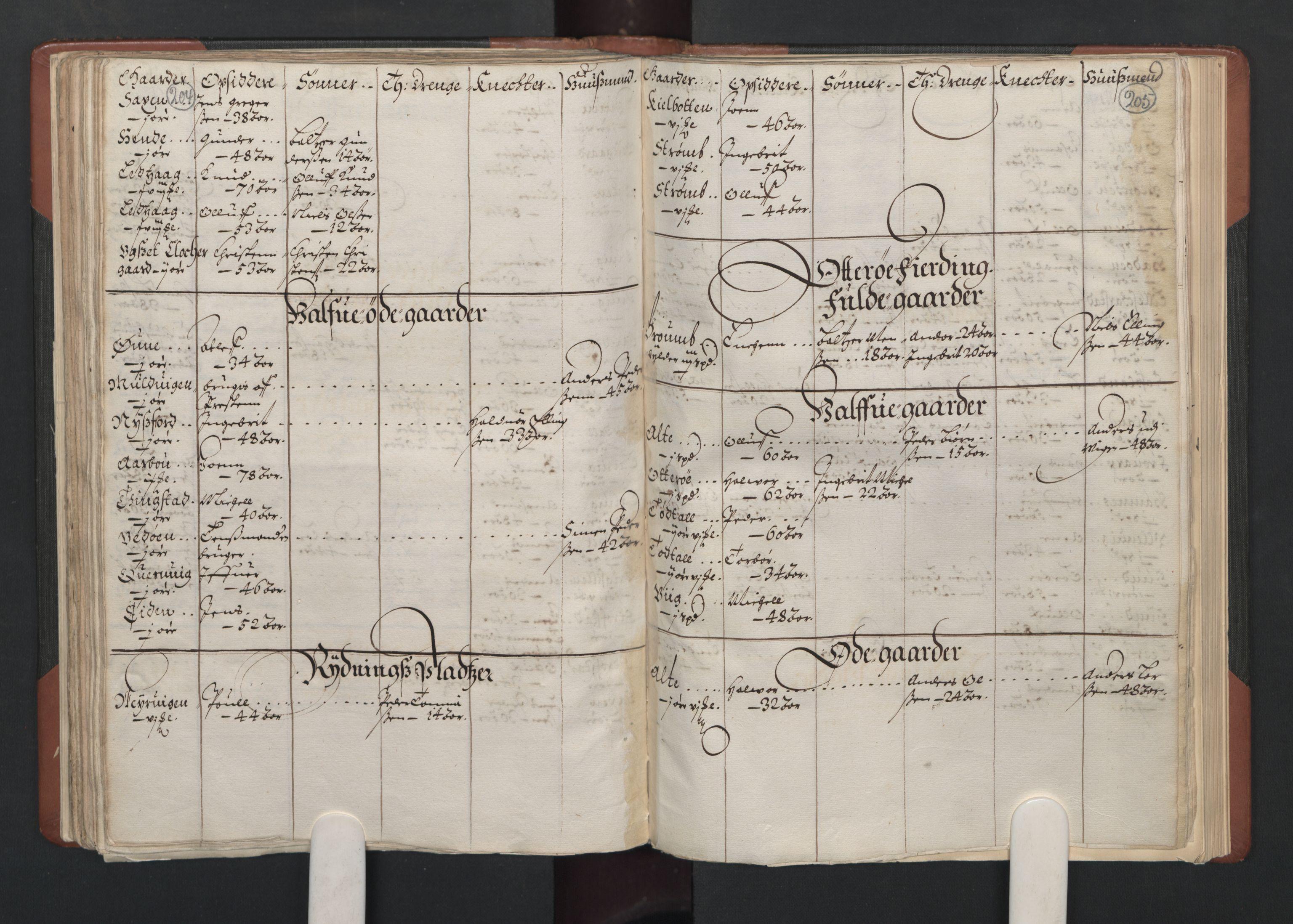 RA, Fogdenes og sorenskrivernes manntall 1664-1666, nr. 19: Fosen fogderi, Inderøy fogderi, Selbu fogderi, Namdal fogderi og Stjørdal fogderi, 1664-1665, s. 204-205