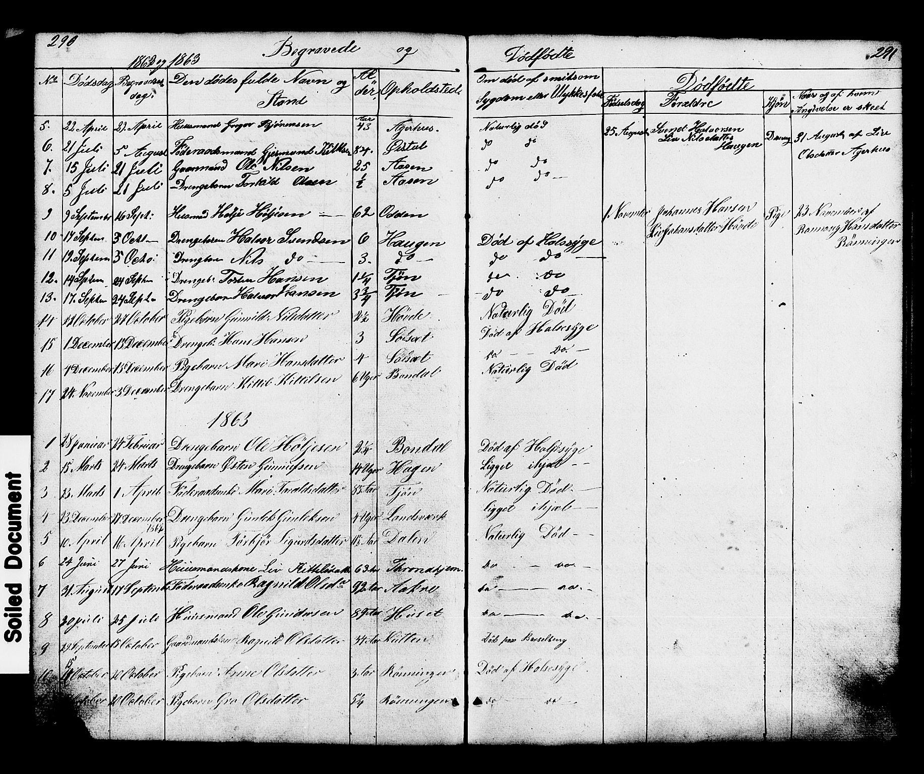 SAKO, Hjartdal kirkebøker, G/Gc/L0002: Klokkerbok nr. III 2, 1854-1890, s. 290-291