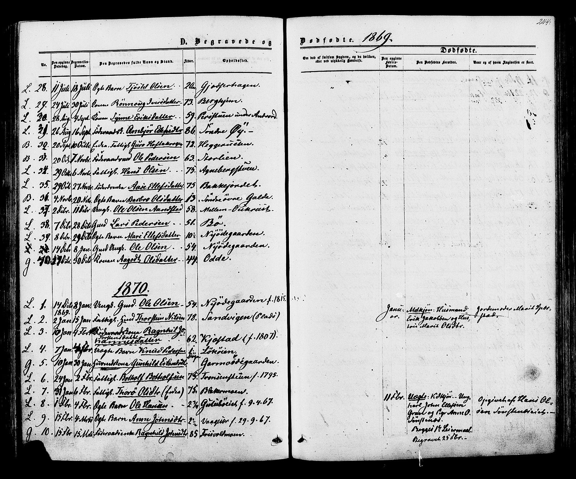 SAH, Lom prestekontor, K/L0007: Ministerialbok nr. 7, 1863-1884, s. 244
