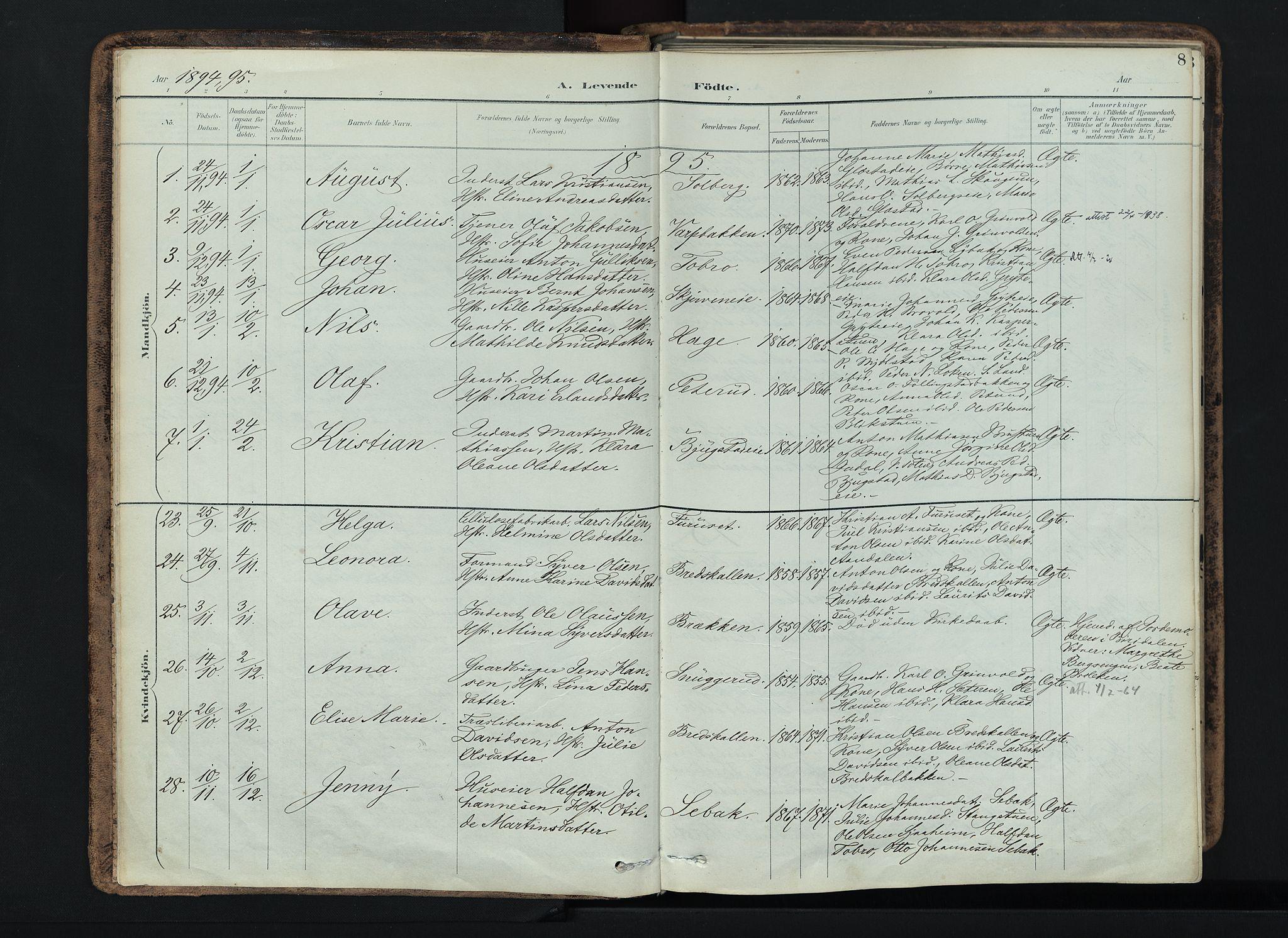 SAH, Vardal prestekontor, H/Ha/Haa/L0019: Ministerialbok nr. 19, 1893-1907, s. 8